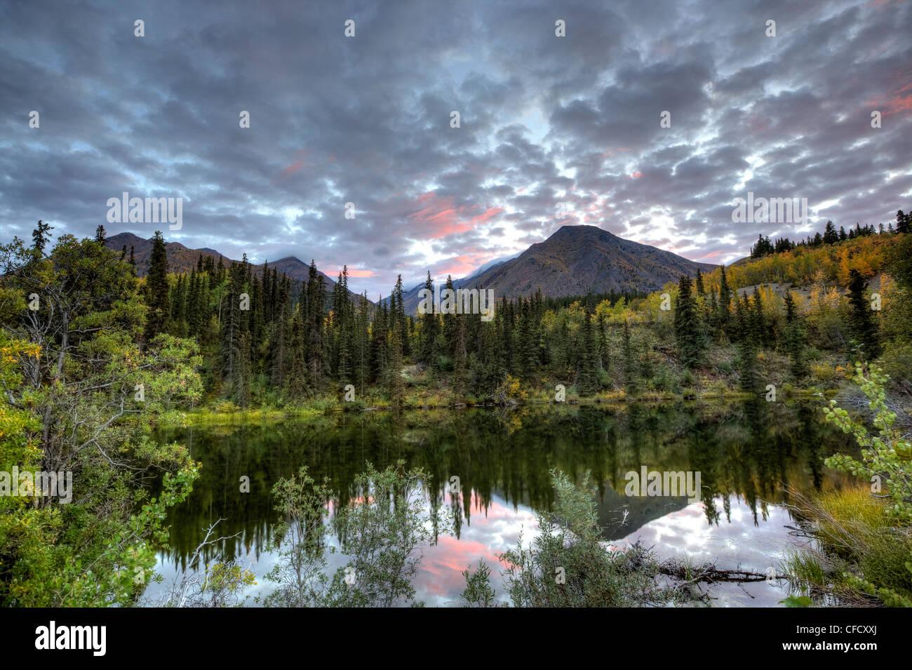 À côté de l'Étang sans nom Annie Lake, Whitehorse, Yukon, Canada. Banque D'Images