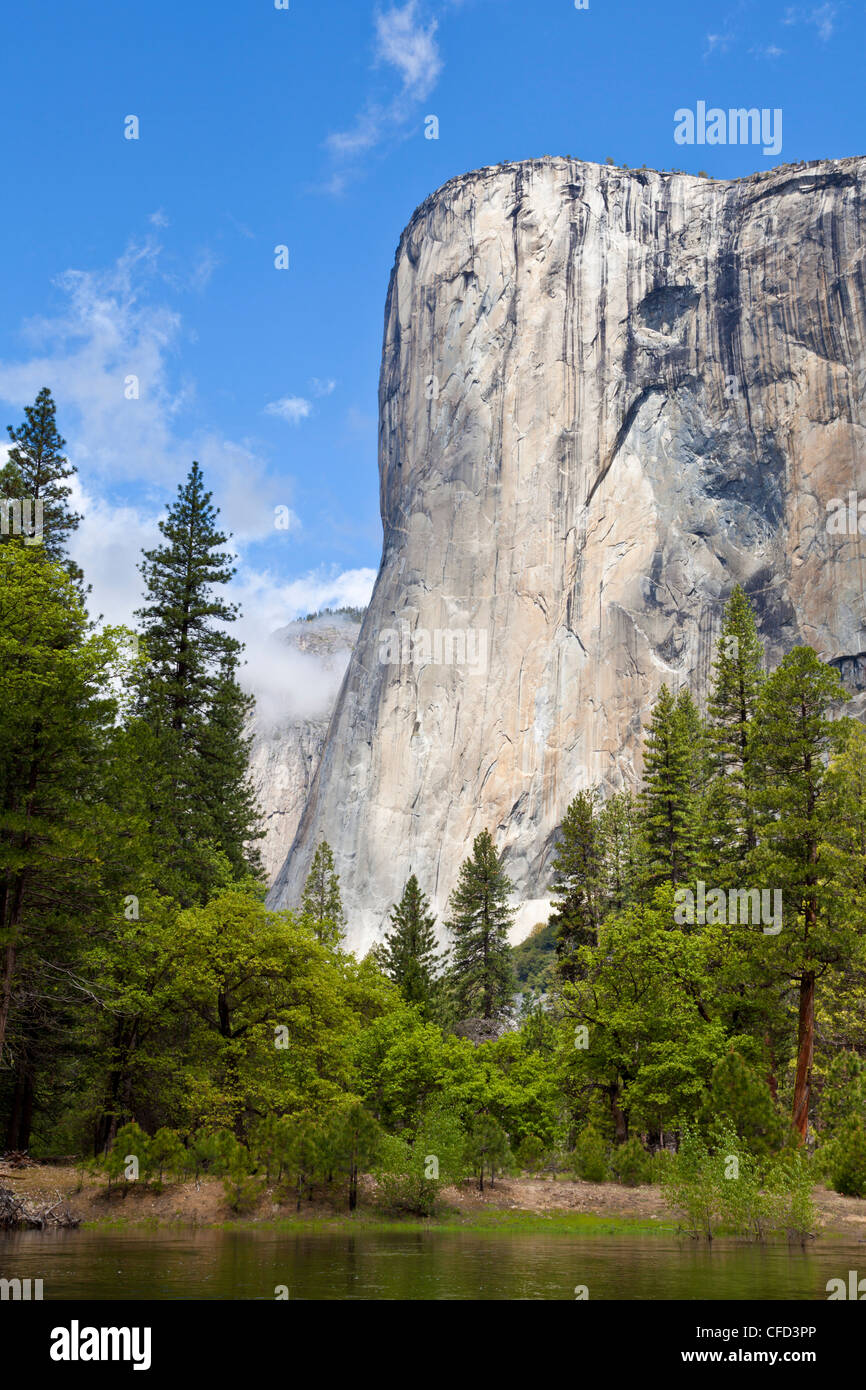 El Capitan, Yosemite National Park, la Sierra Nevada, Californie, USA Photo Stock