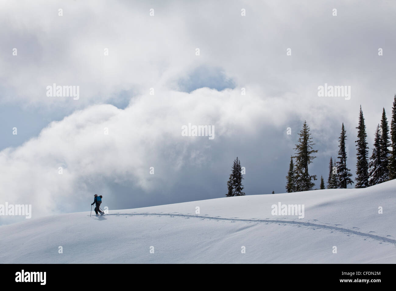 Un homme ski de randonnée à Sol Mountain Lodge, Monashees, près de Revelstoke, British Columbia, Photo Stock