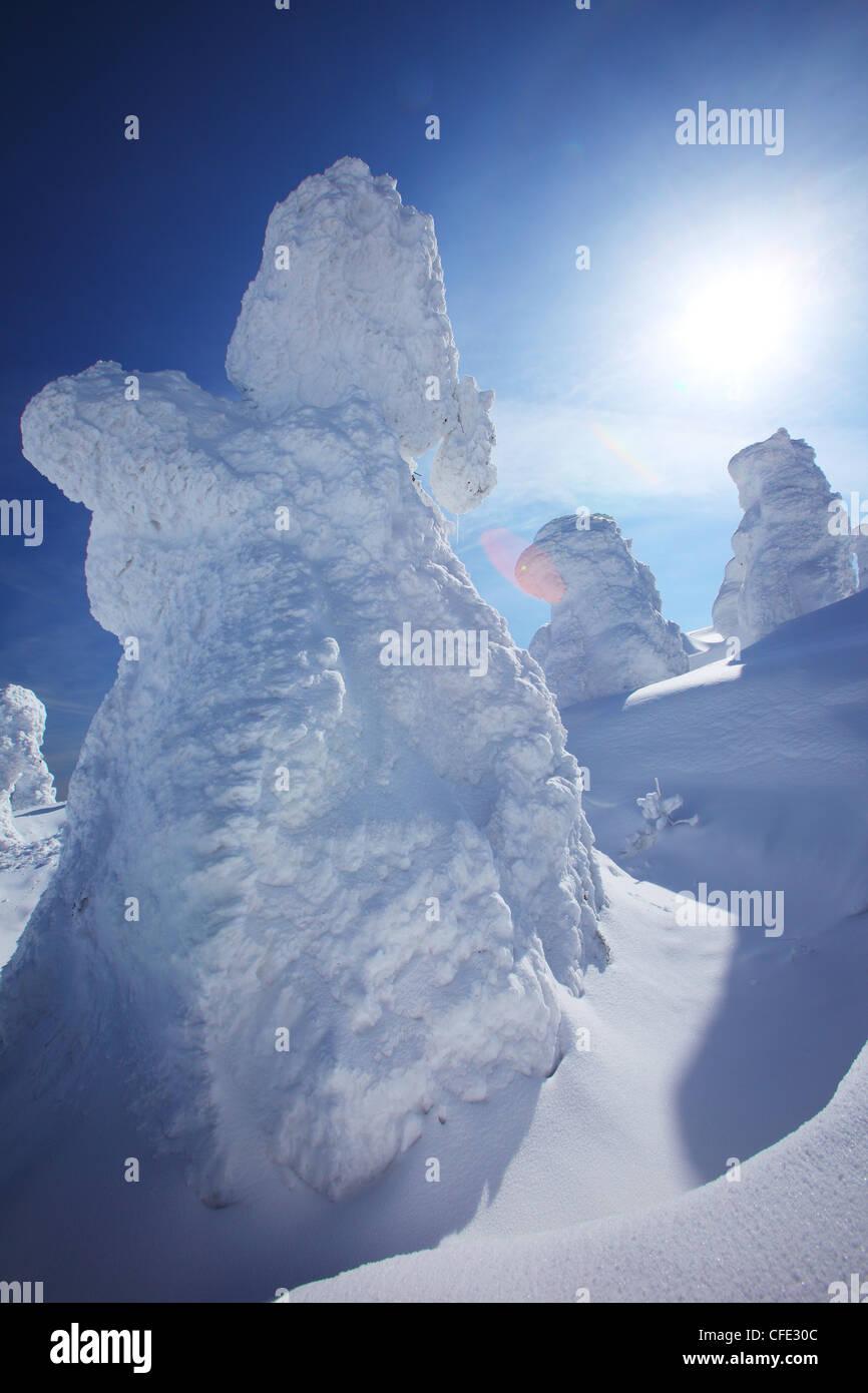 Monstre de neige sur le mont Zao, Yamagata Japon Tohoku Photo Stock