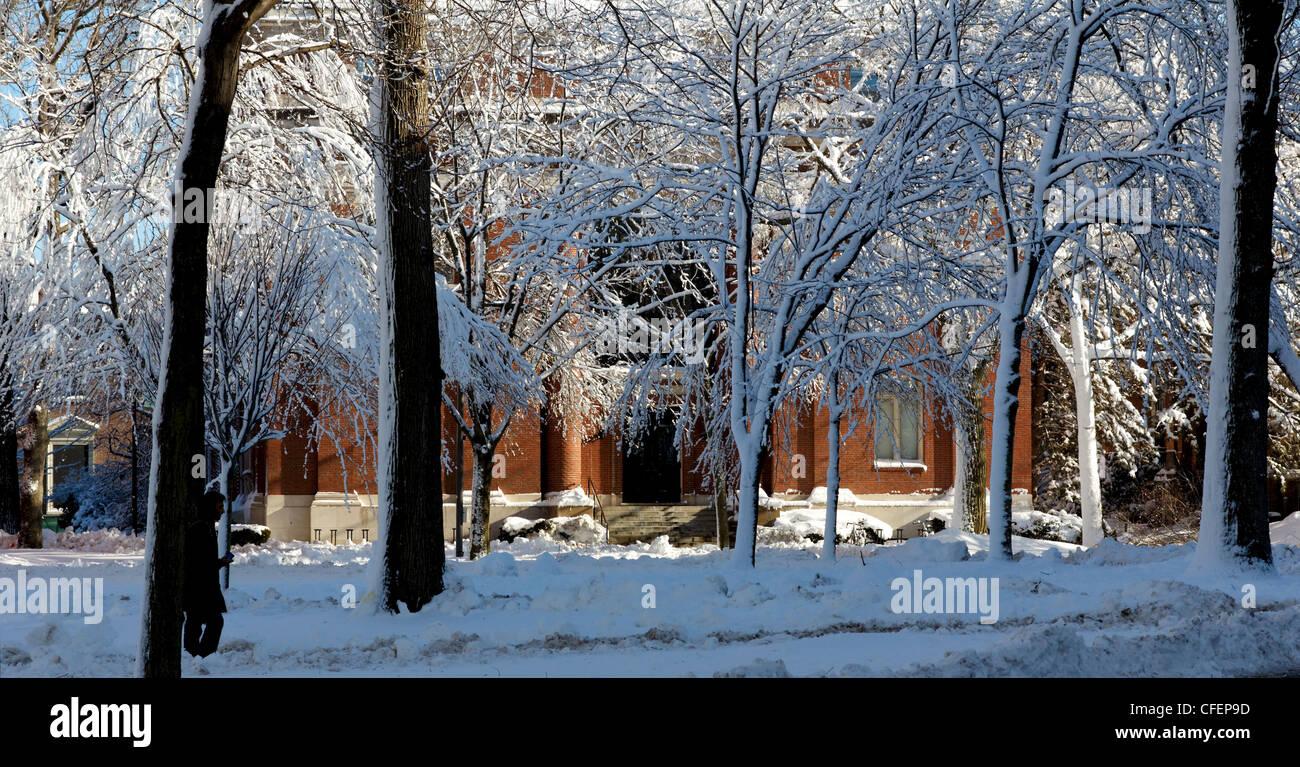 Harvard Yard, le centre ancien de Harvard University Campus, dans la neige givrée le lendemain d'une tempête Photo Stock