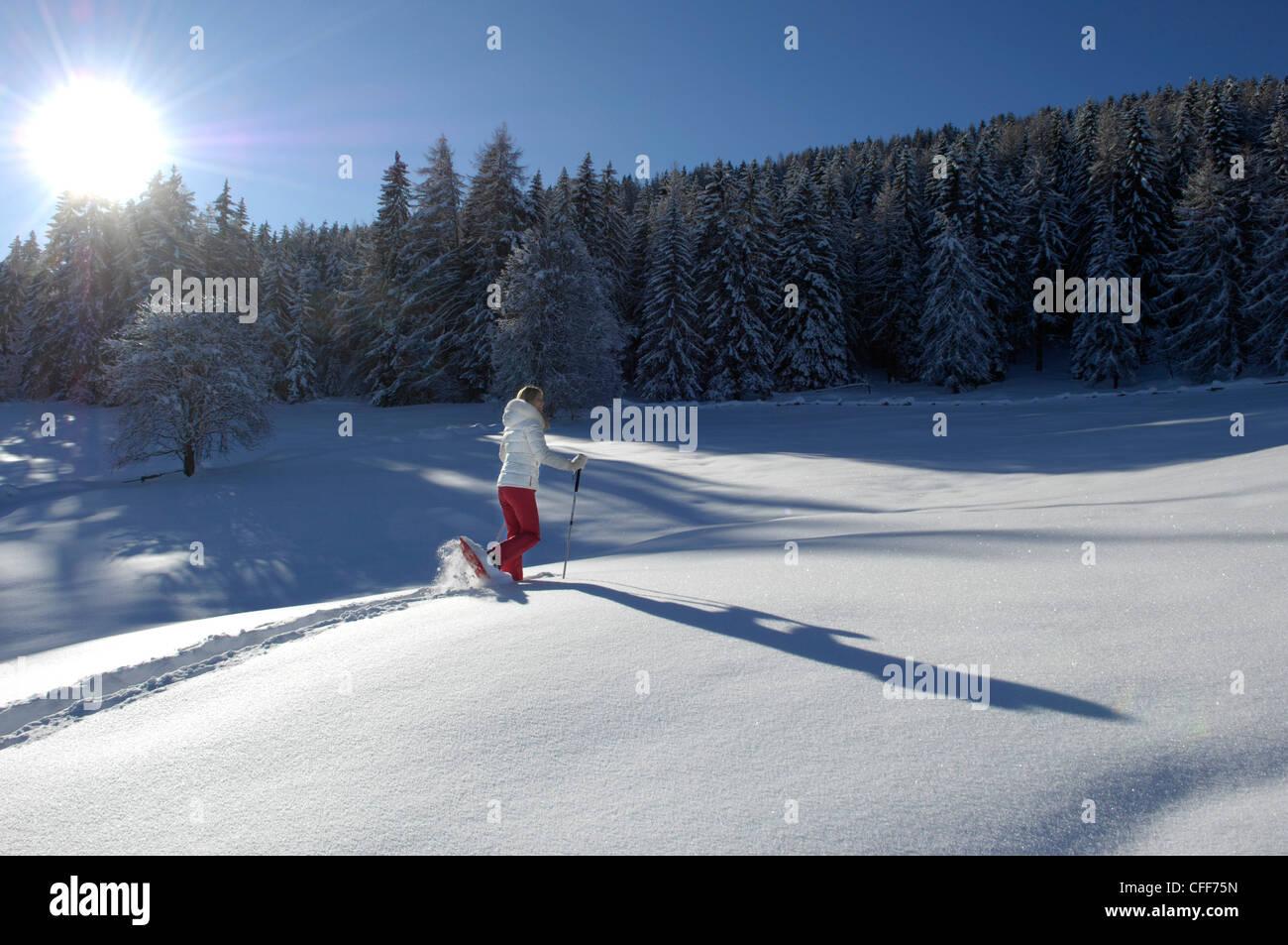Une personne de raquette en paysage de neige, l'Alto Adige, le Tyrol du Sud, Italie, Europe Photo Stock