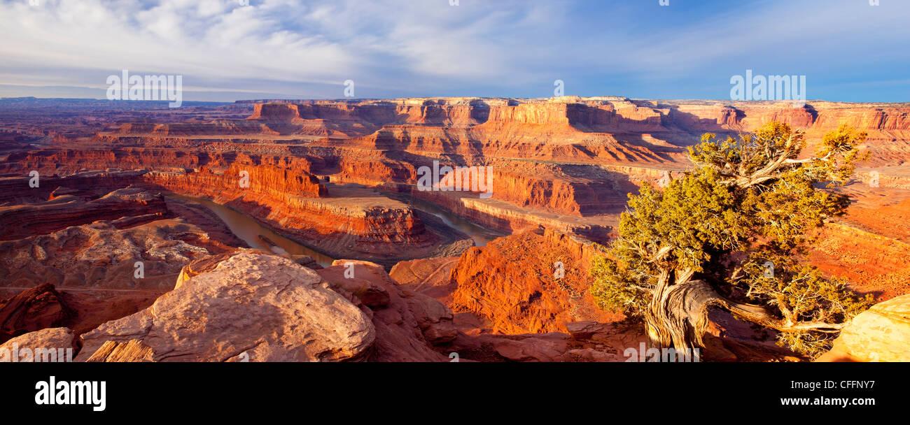 Vue panoramique sur le lever du soleil sur le Plateau du Colorado à Dead Horse State Park, Moab Utah, USA Photo Stock