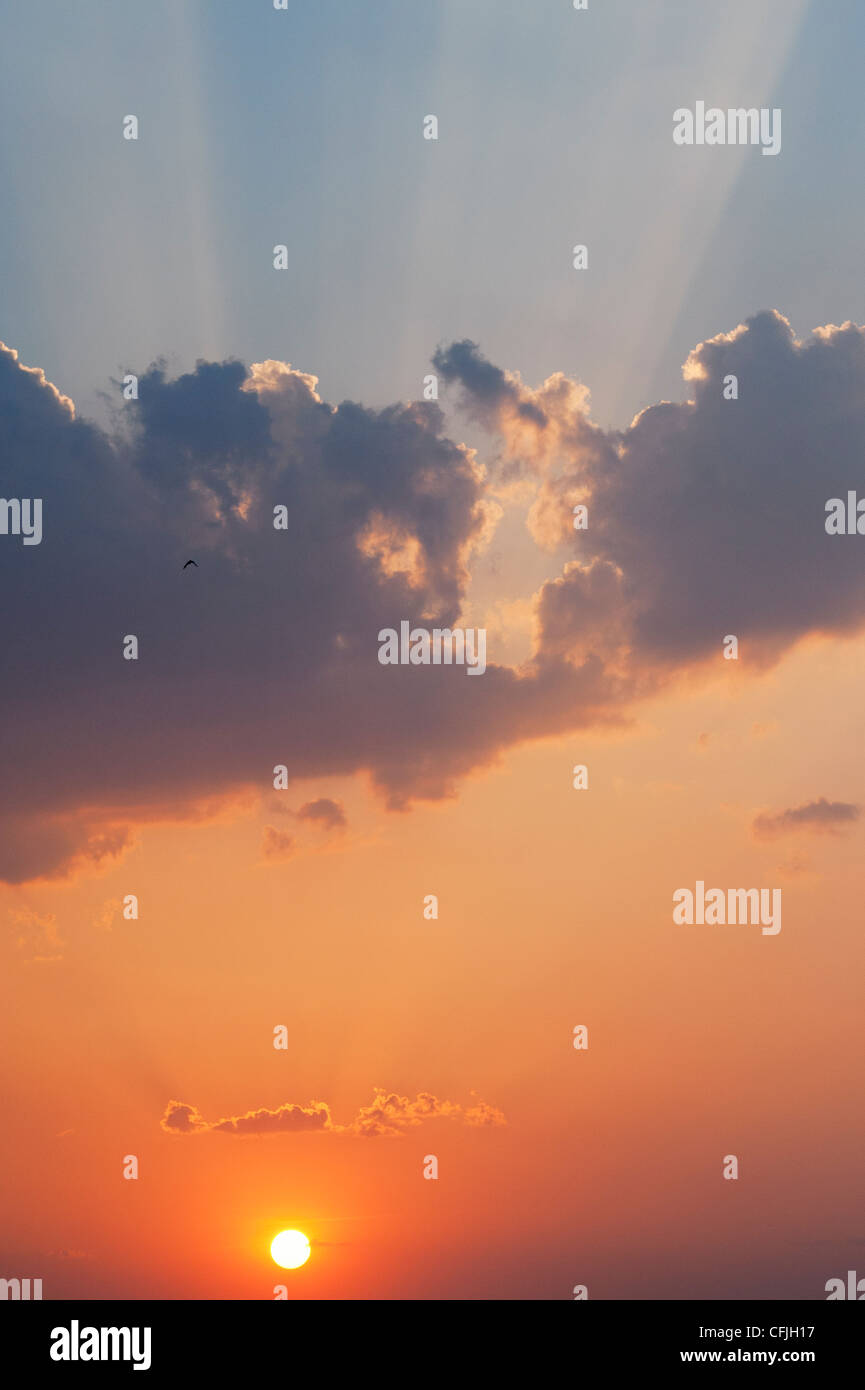 Ciel coucher de soleil indien. L'Andhra Pradesh, Inde Photo Stock