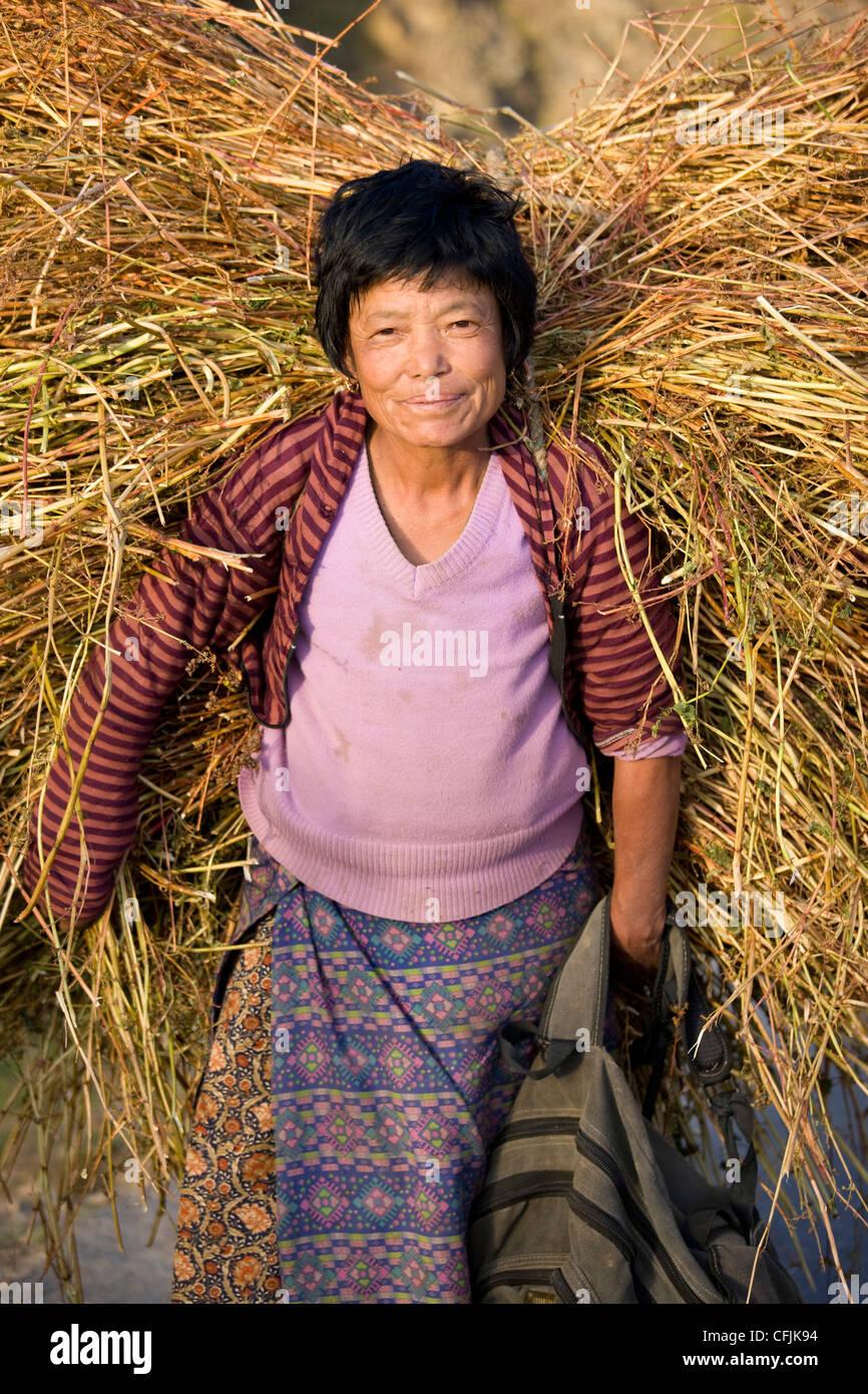 Femme dans la lumière du soleil du soir transporte une grande botte de paille pour nourrir son bétail, vallée de Banque D'Images