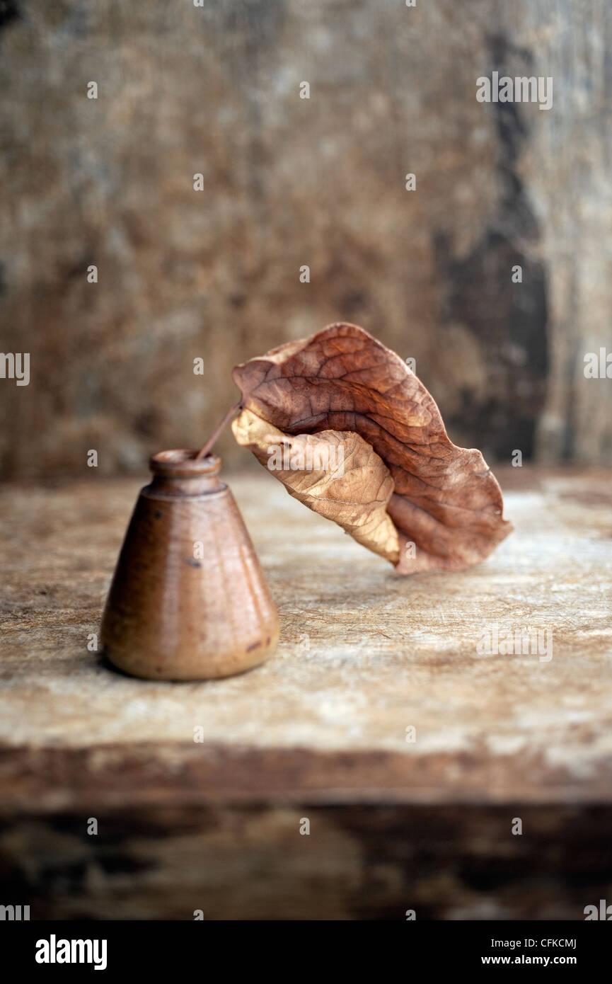 Leaf photographié dans une ancienne bouteille d'encre. Photo Stock