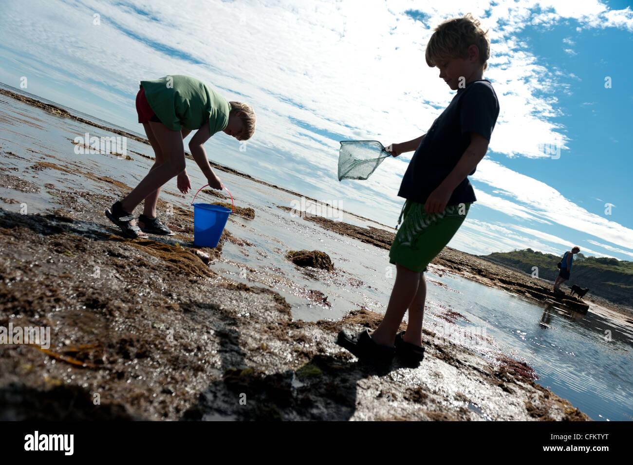 Les garçons à la découverte des rochers sur la plage de Lyme Regis, dans le Dorset Photo Stock