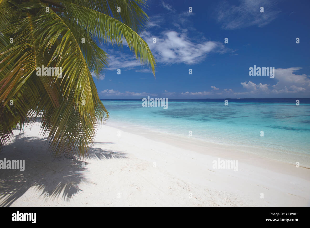 Plage vide on tropical island, Maldives, océan Indien, Asie Photo Stock