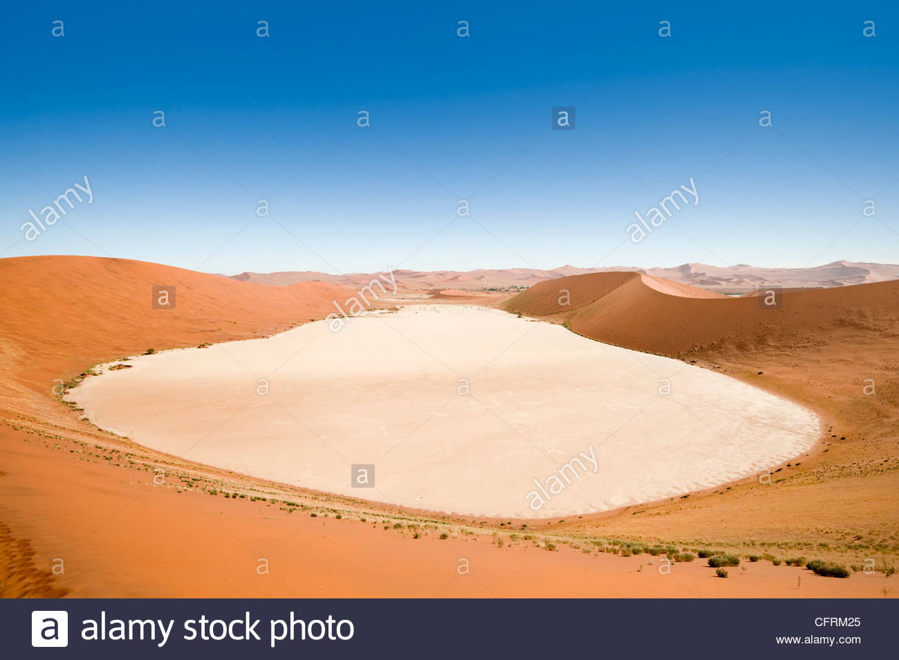 Le Dead Vlei, du 'Big Daddy', des dunes de sable du parc de Namib Naukluft, Namibie Photo Stock