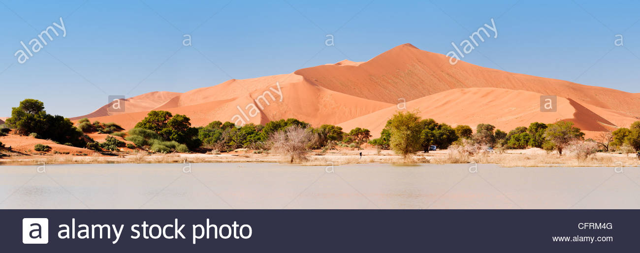 Le parc de Namib Naukluft Sossusvlei, Namibie, Photo Stock