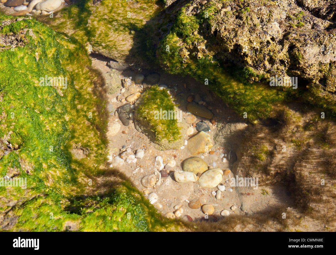 Piscine plage Photo Stock