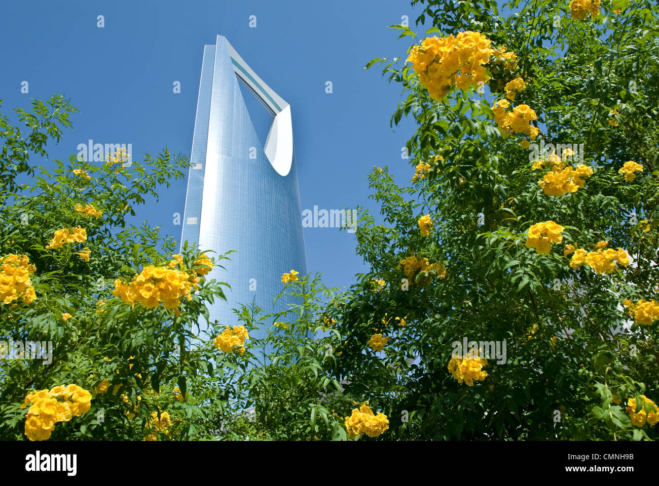 Asie Arabie Saoudite Riyadh l'architectural Kingdom Tower Photo Stock