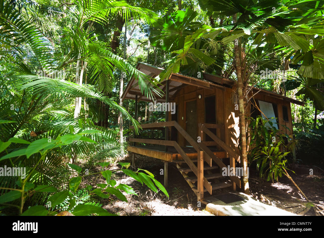 Cabine au PK's Rainforest Jungle Village. Cape Tribulation, parc national de Daintree, Queensland, Australie Photo Stock