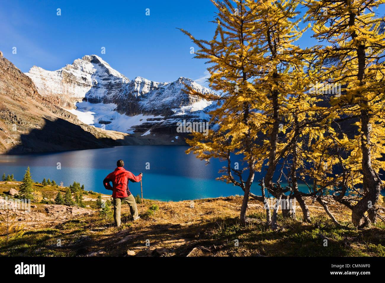 Randonneur sur le lac McArthur et Mont Biddle, le parc national Yoho, en Colombie-Britannique Photo Stock