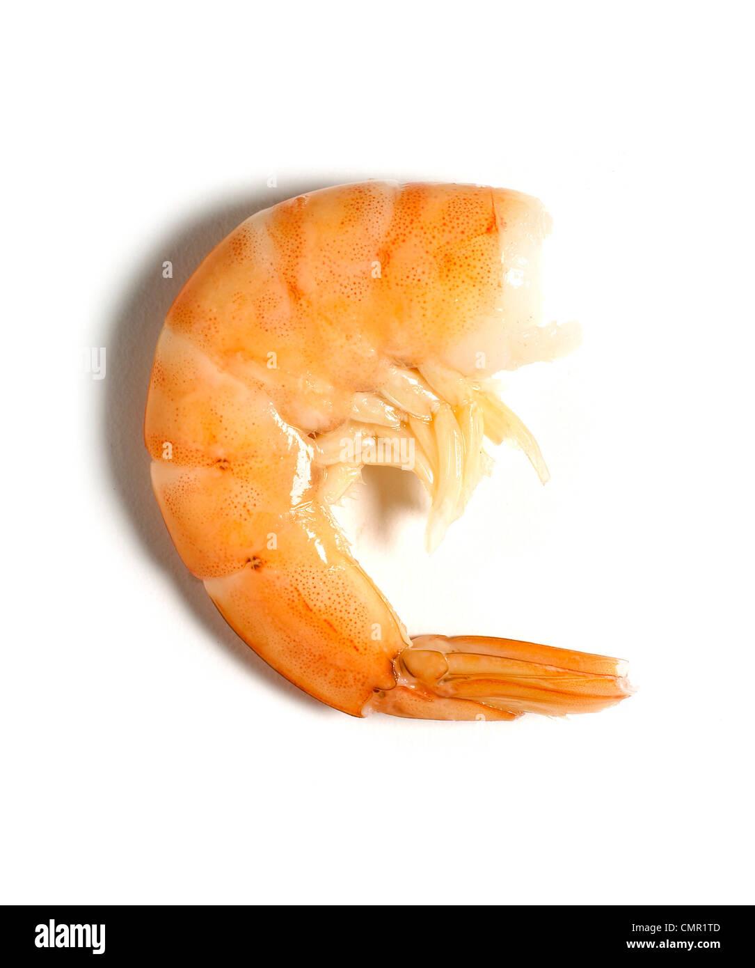 Une crevette crevette sans tête Photo Stock