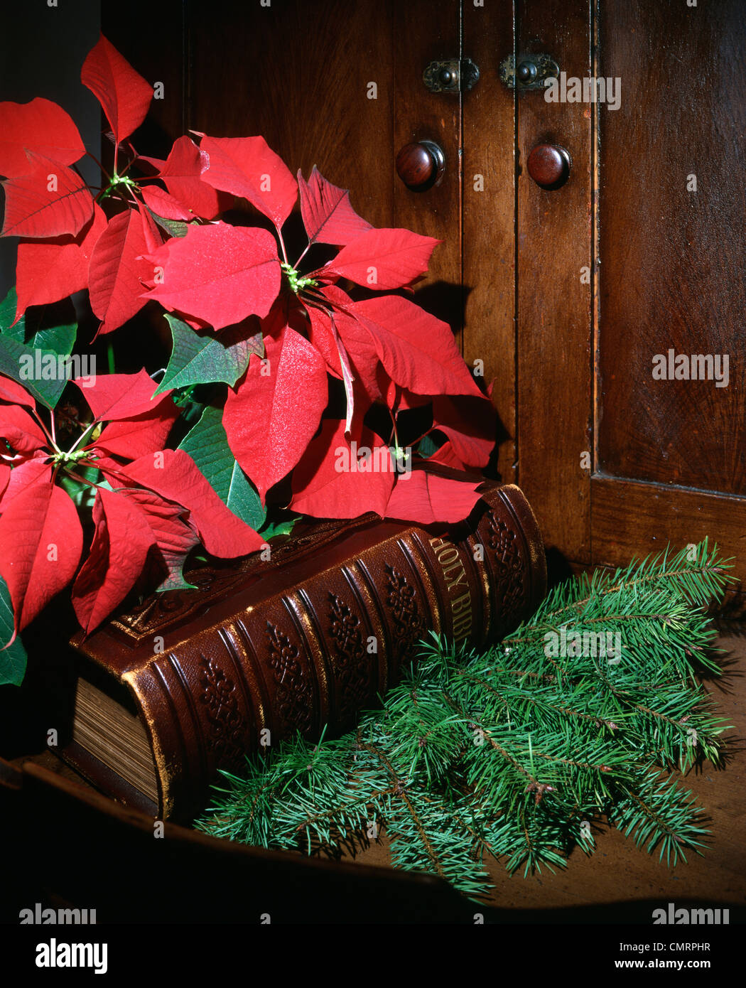 1979 1970 RETRO POINSETTIAS BIBLE Photo Stock