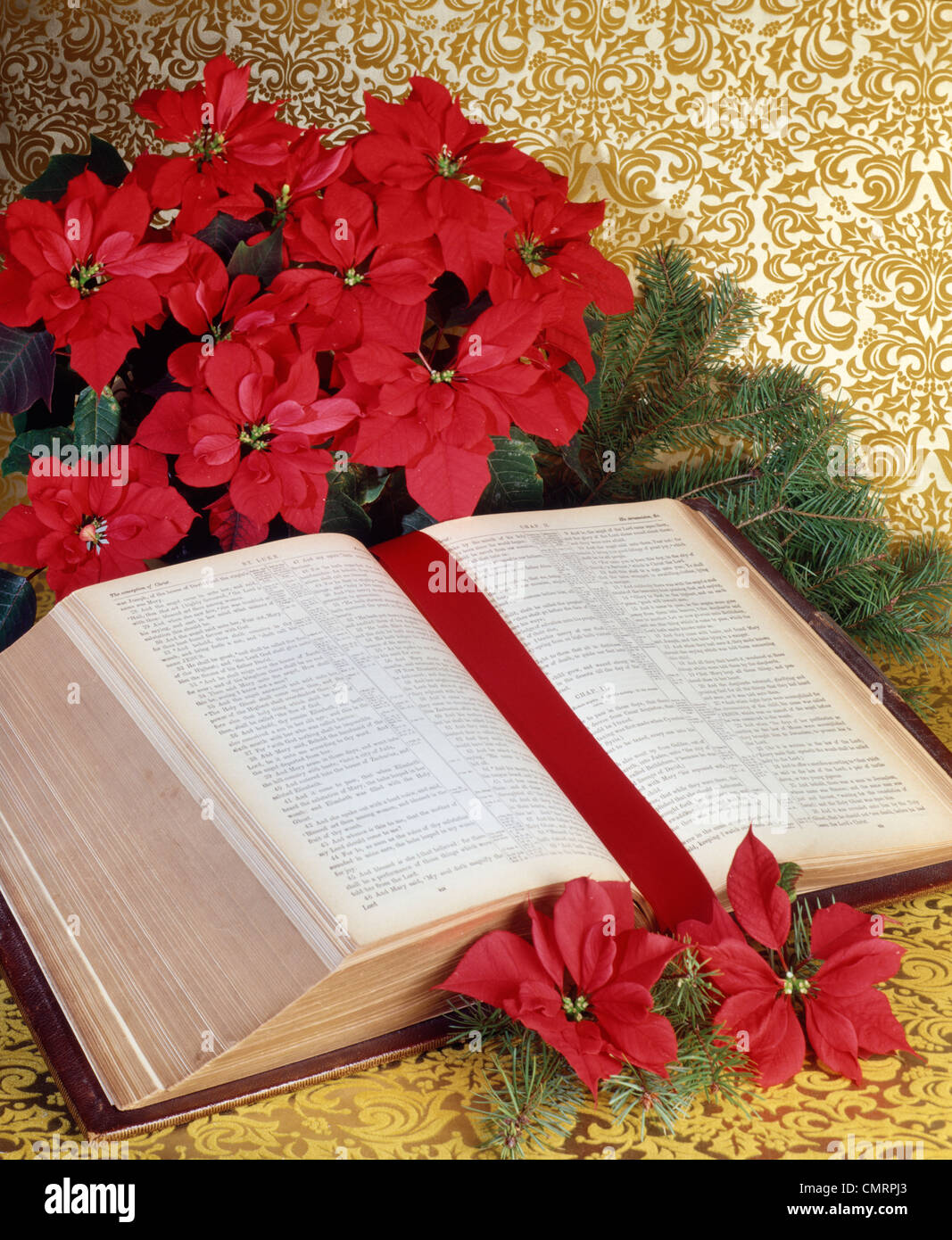 1979 1970 RETRO BIBLE POINSETTIAS Photo Stock