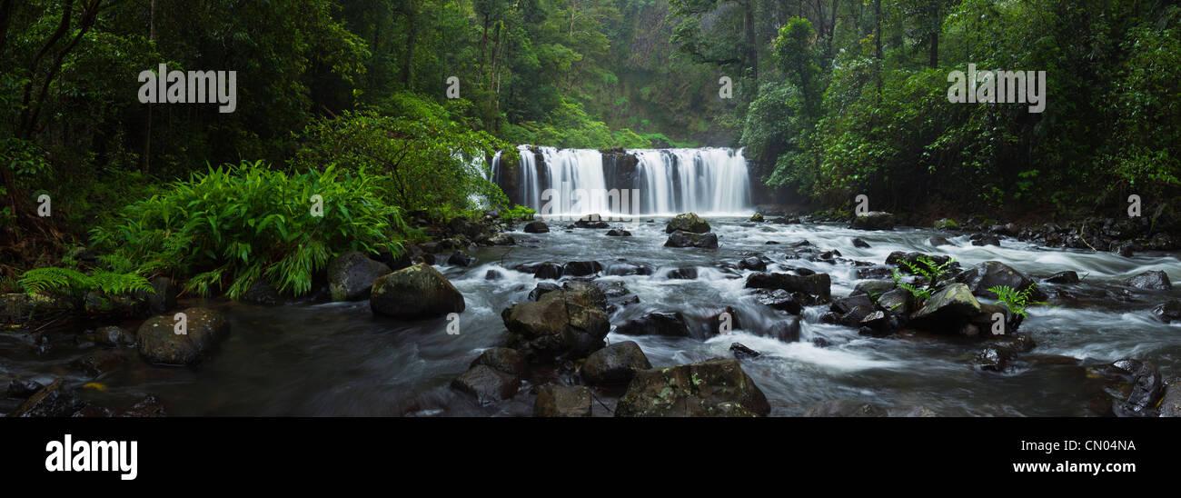Nandroya Falls dans le Parc National de Wooroonooran. Atherton Tablelands, Innisfail, Queensland, Australie Photo Stock