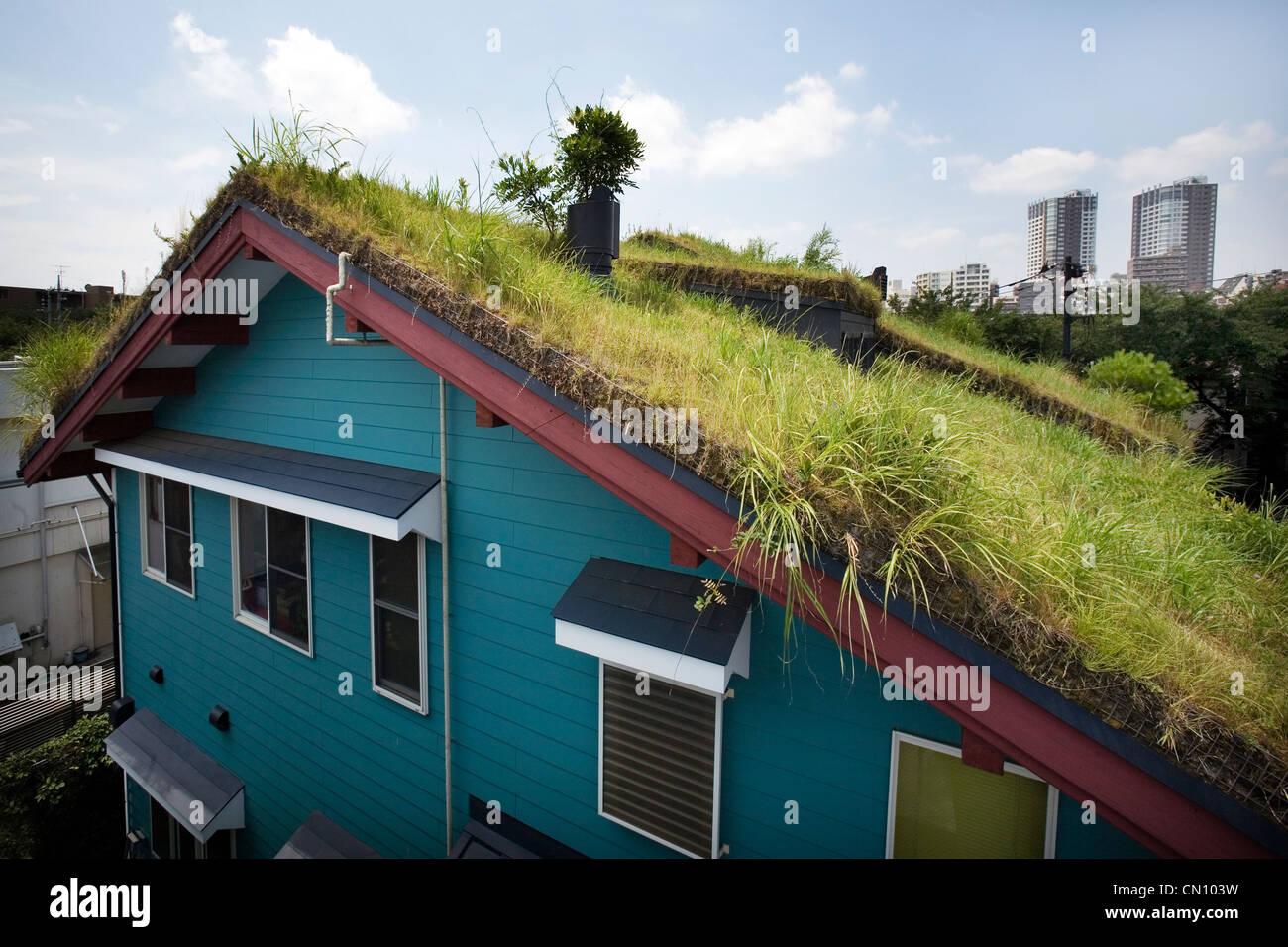 Le toit vert du Studio Ghibli. Hayao Miyazaki's atelier à Mitaka Tokyo. Photo Stock