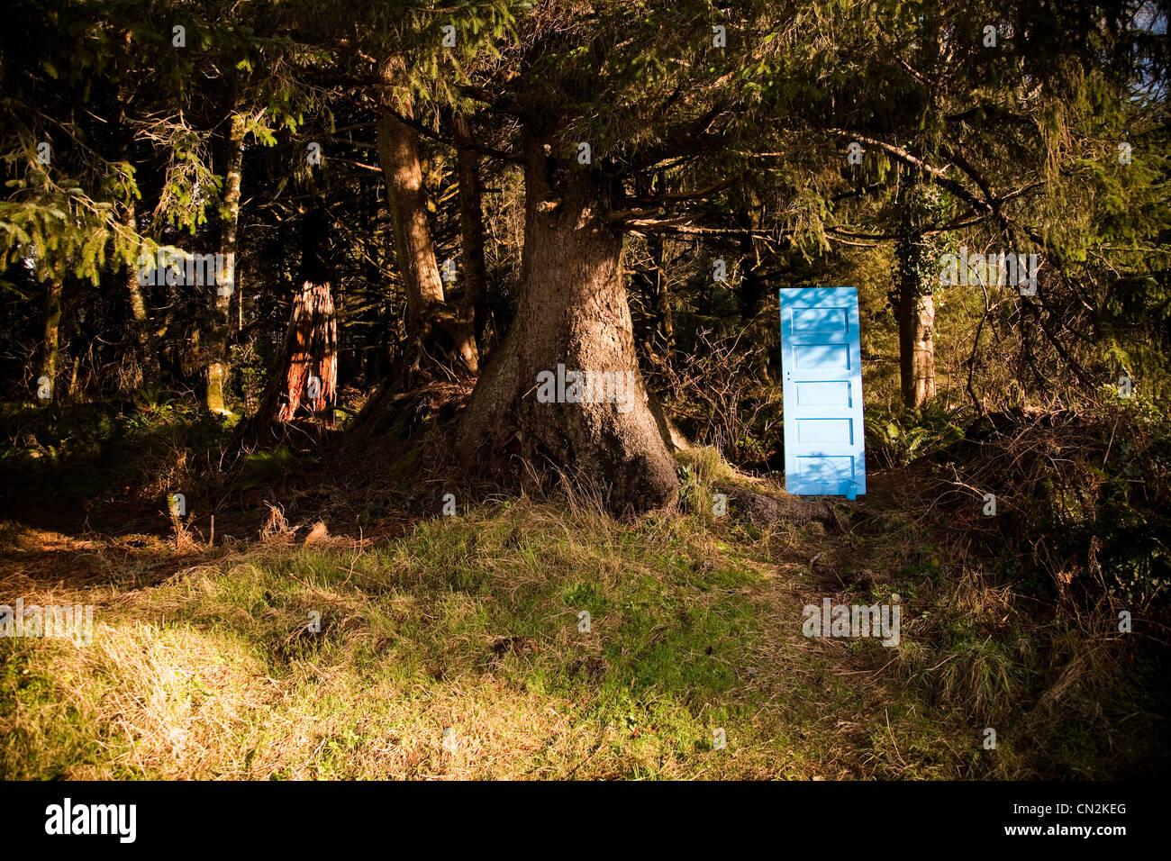Porte peinte en bleu dans la forêt Photo Stock
