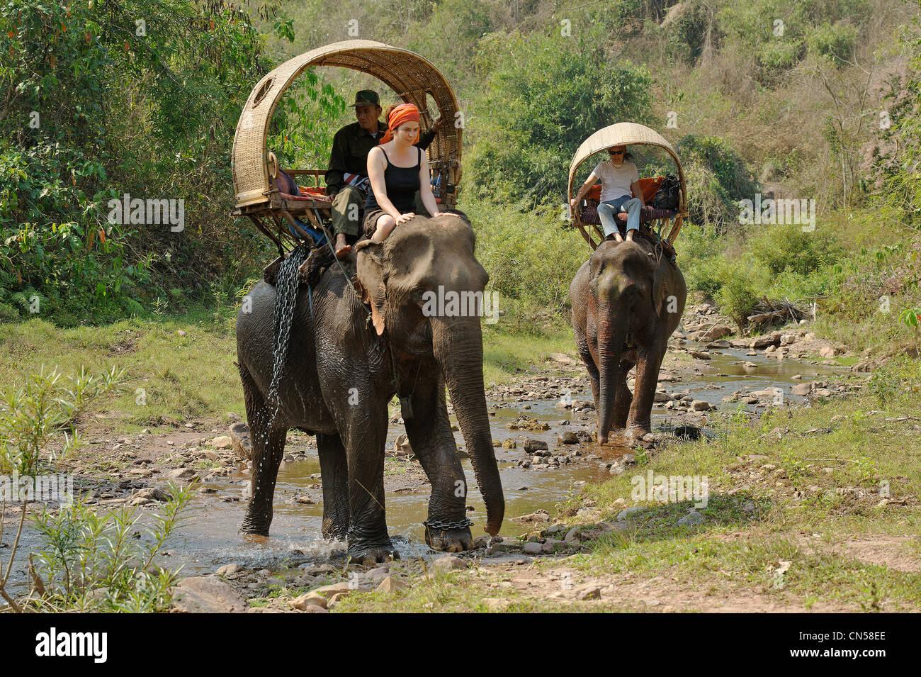 Laos, Sainyabuli Province, Thanoon, trek à dos d'éléphant dans la région de palanquins, Photo Stock