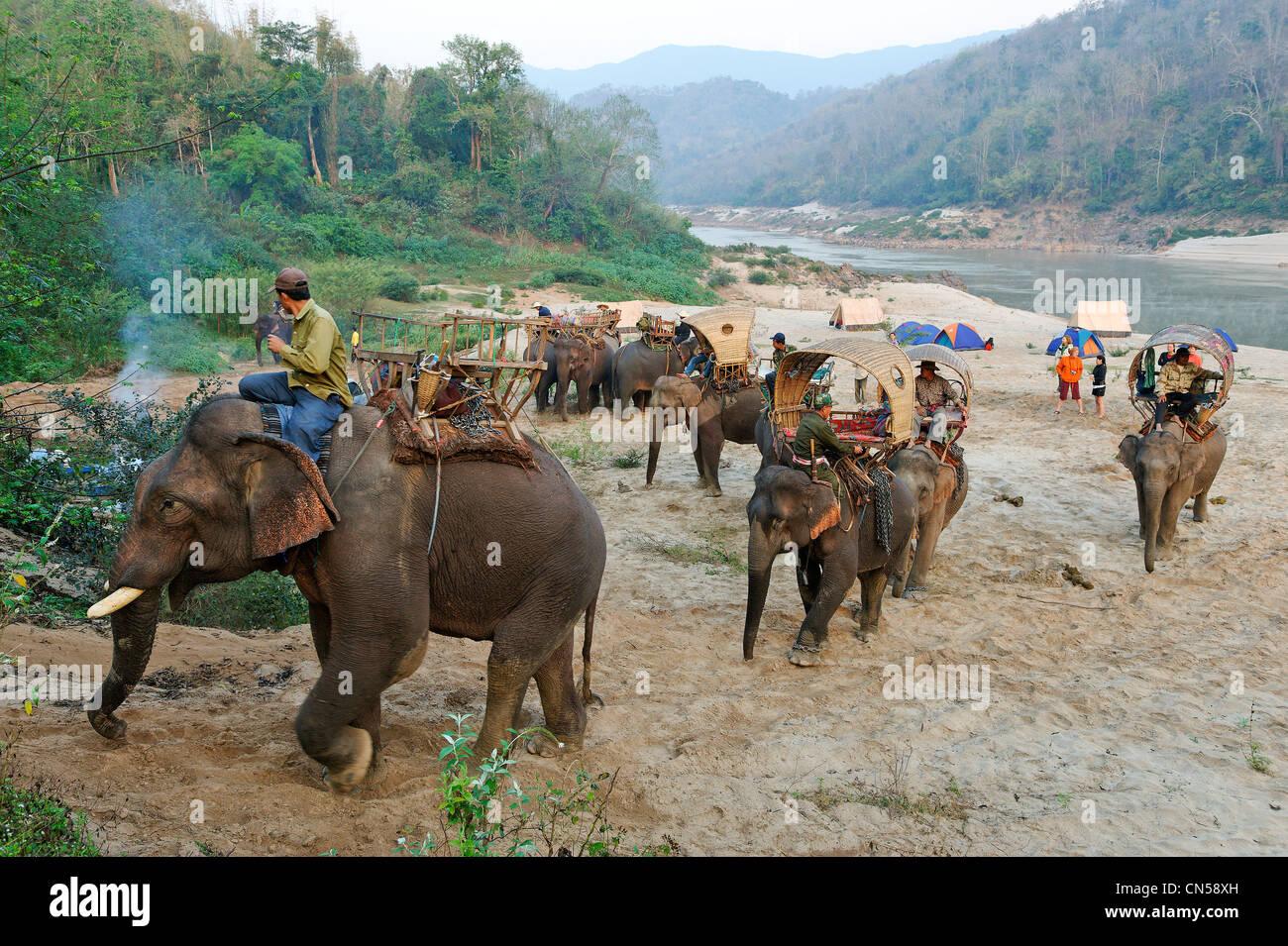 Laos, Sainyabuli Province, Mékong, randonnée à dos d'éléphant, départ de la caravane Photo Stock