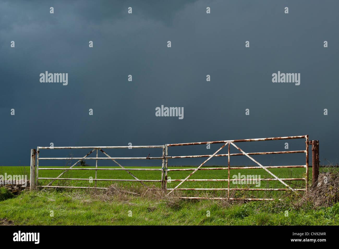 Pluie nuages orageux sur une terrasse bien allumé champ de blé dans la campagne anglaise Photo Stock