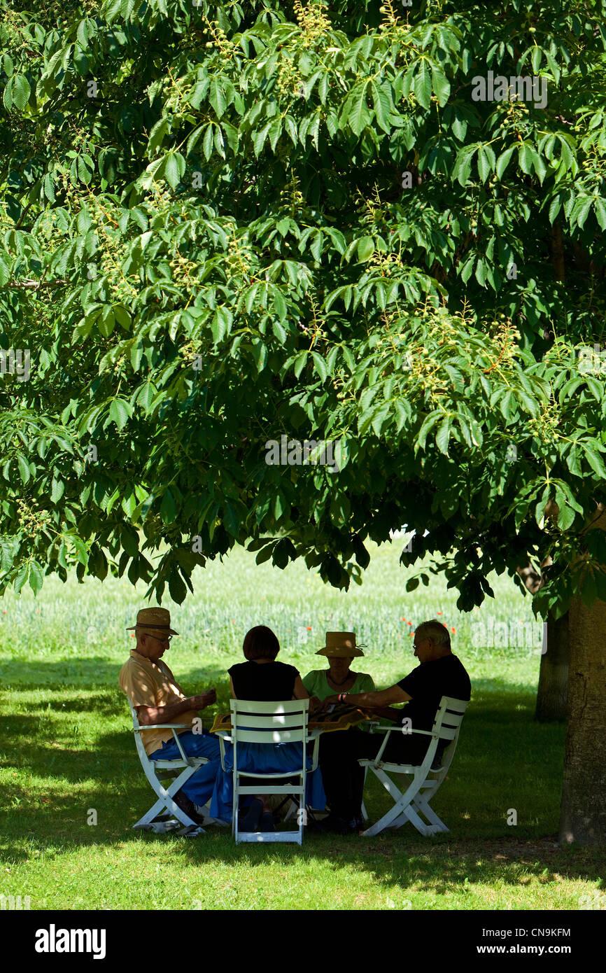 La France, Vaucluse, Luberon, Lourmarin, une partie de cartes sous un marronnier Photo Stock