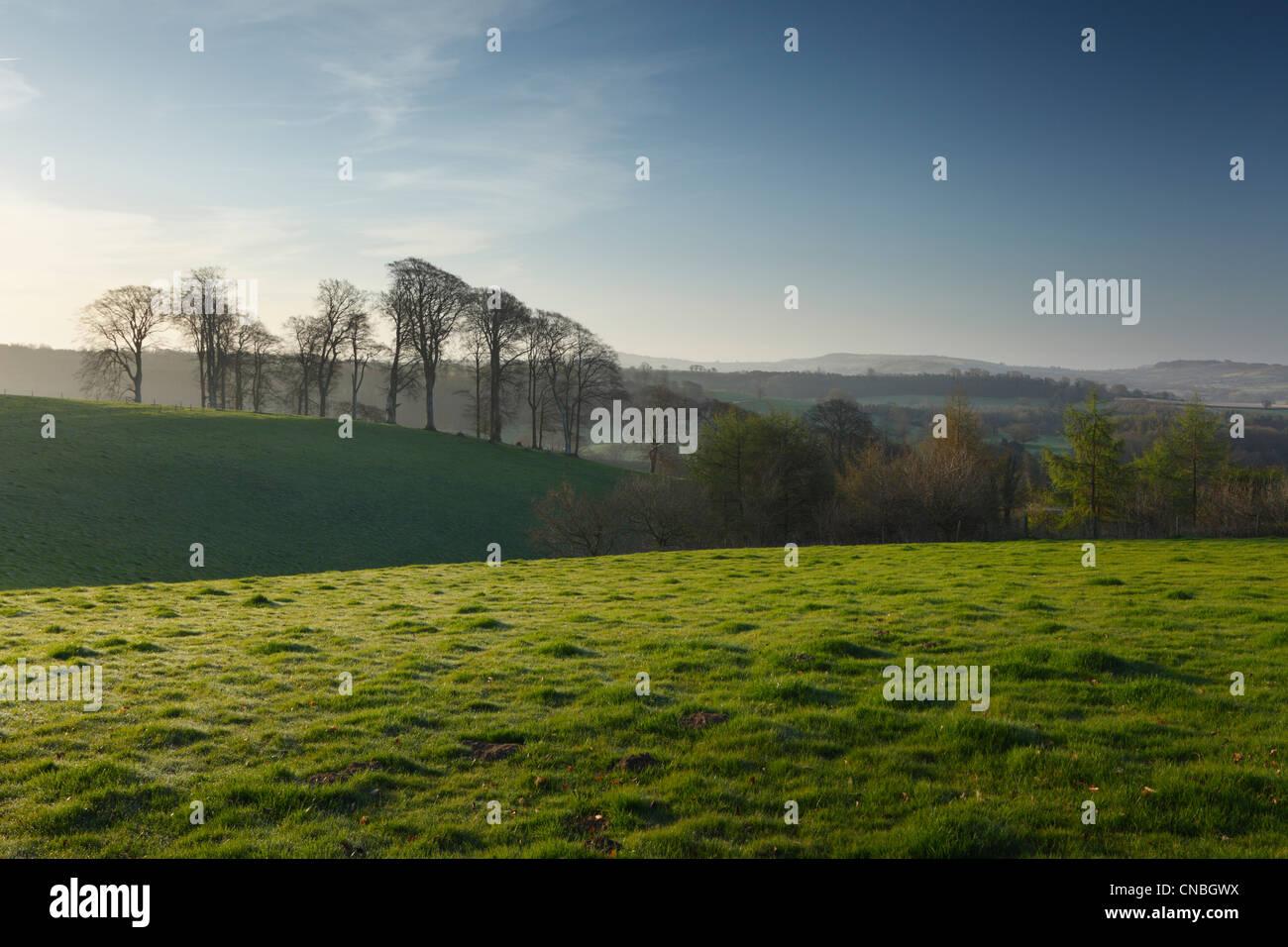 Immobilier St Thomas de cricket au printemps. Le Somerset. L'Angleterre. UK. Photo Stock