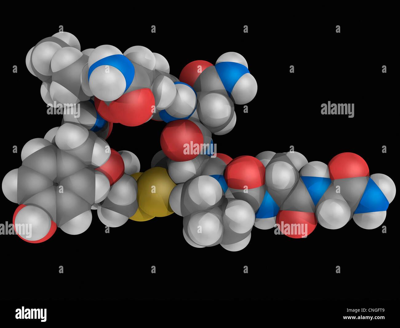 Molécule de l'hormone ocytocine Photo Stock