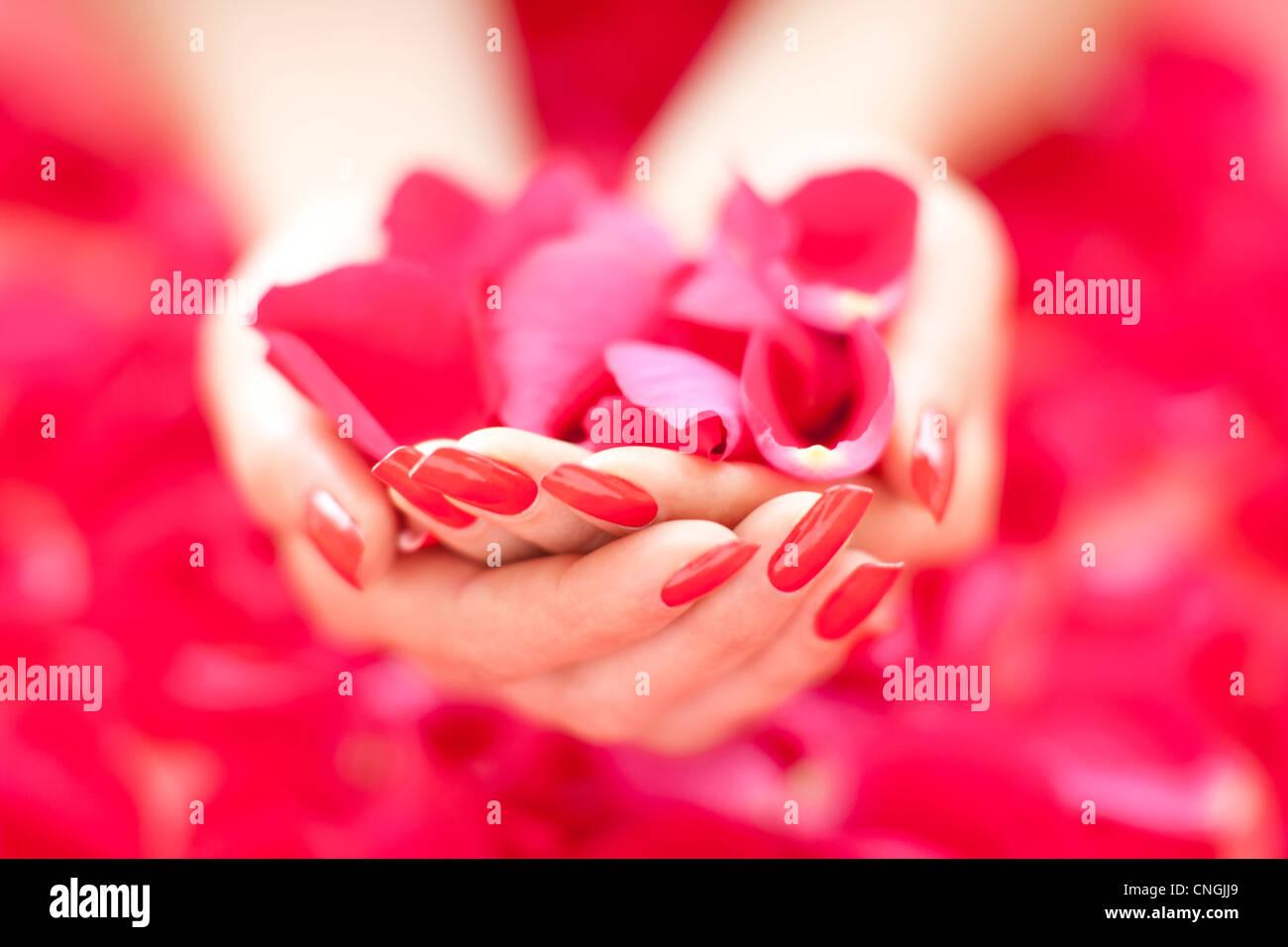 Image romantique Photo Stock