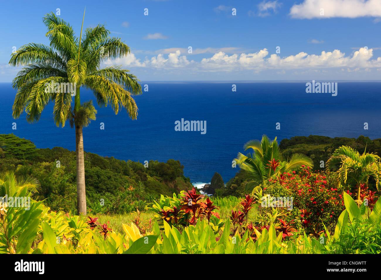 Vue sur l'océan depuis le jardin d'Eden, Maui, Hawaii Photo Stock