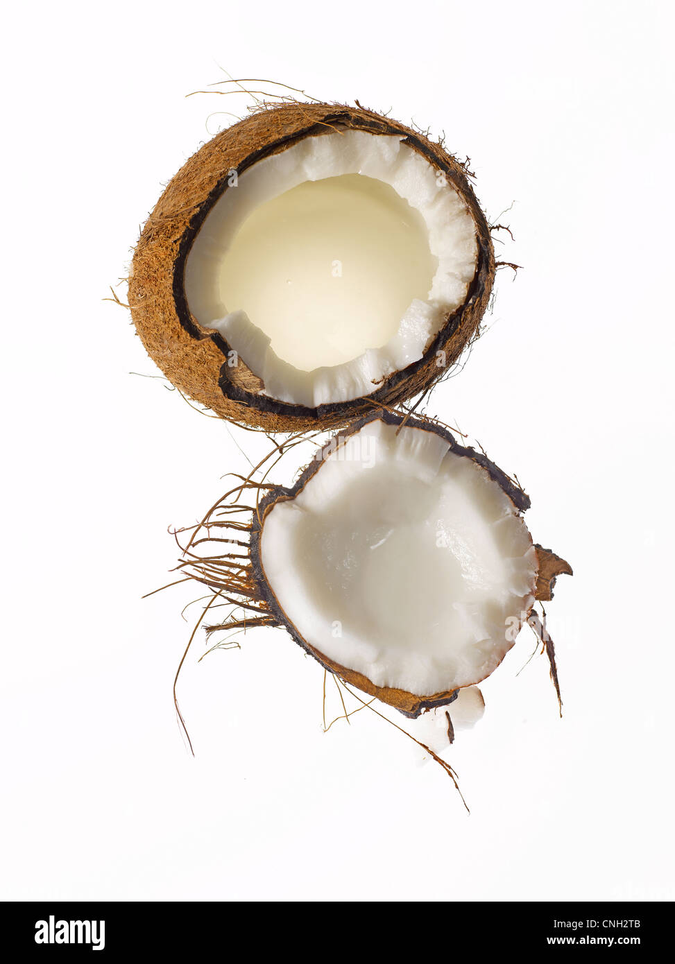 Matières premières fraîches coupées en coco Banque D'Images