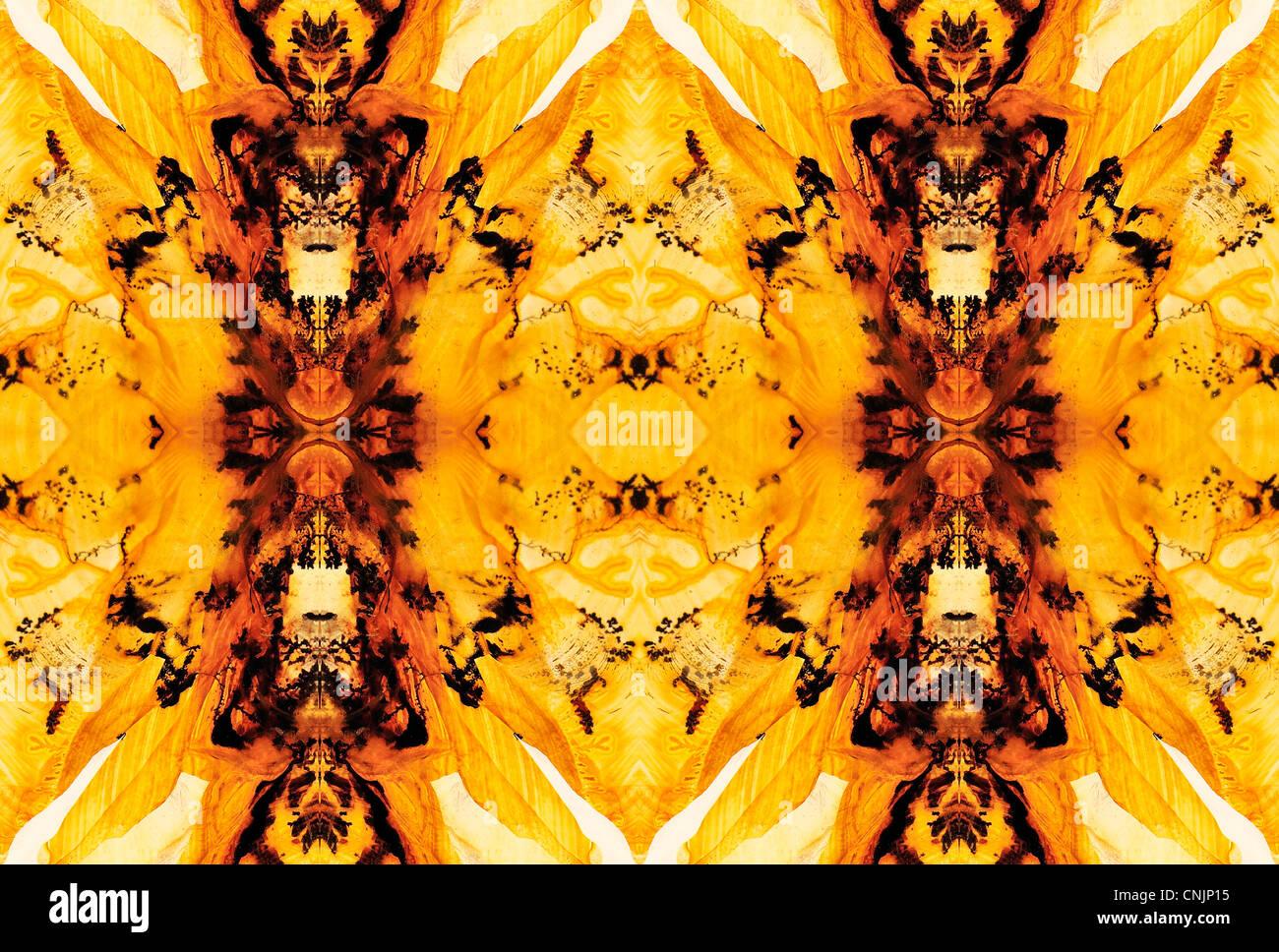 Tranche polie de Lodolite / Paysage Quartz - motif symétrique faite par la répétition de l'image Photo Stock