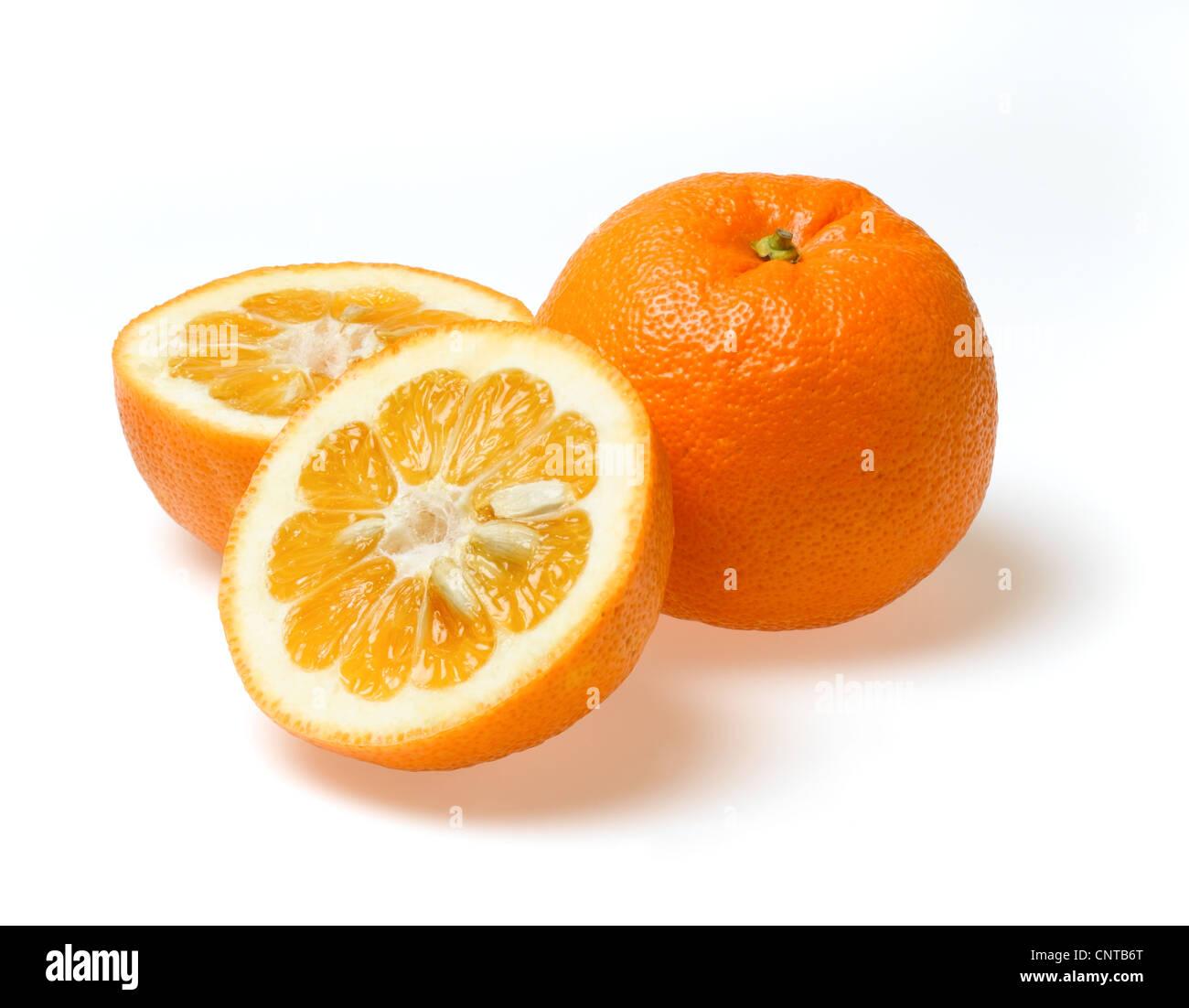 Les oranges de Séville Photo Stock