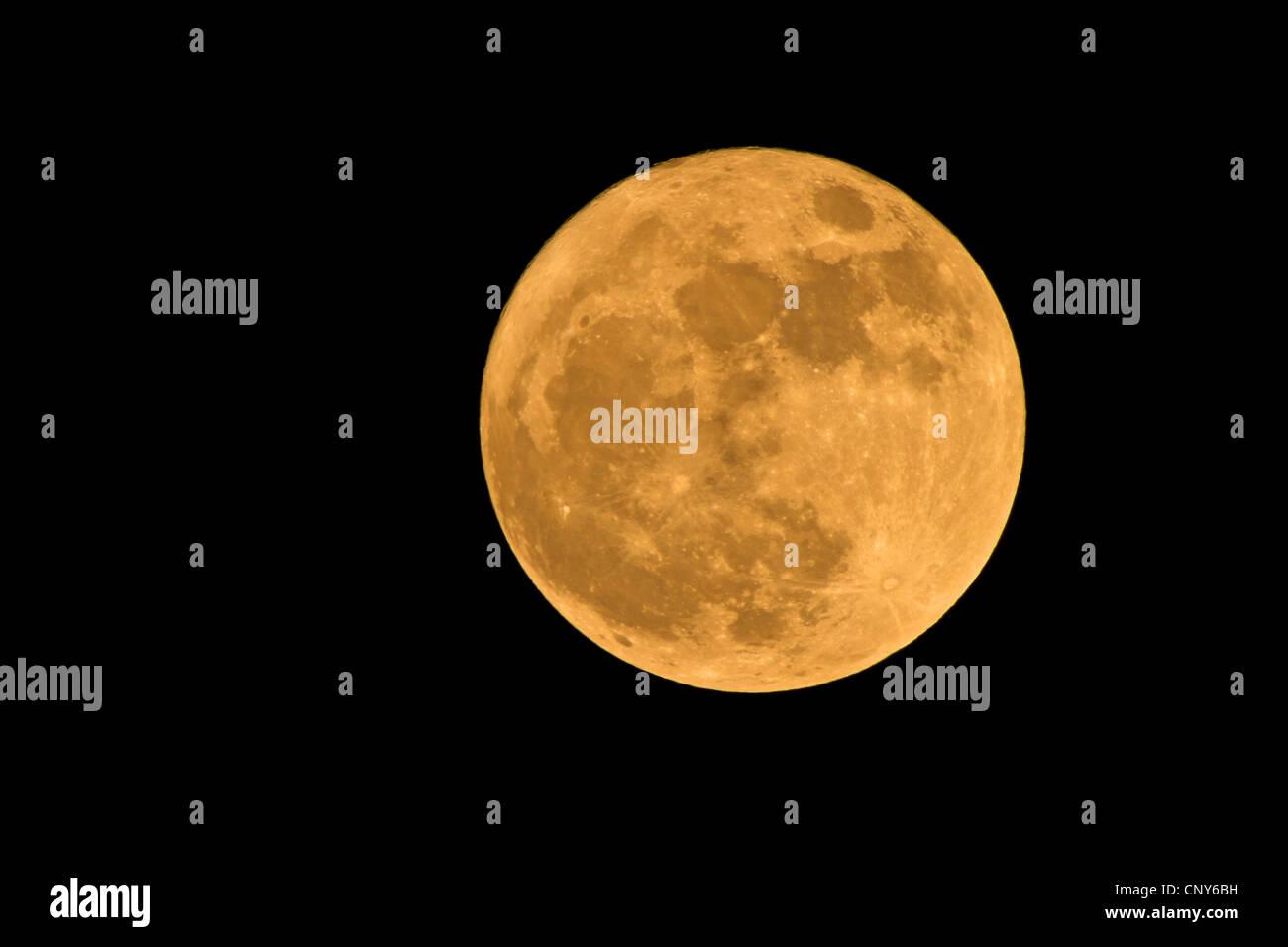 Pleine lune dans un ciel sans nuages Banque D'Images
