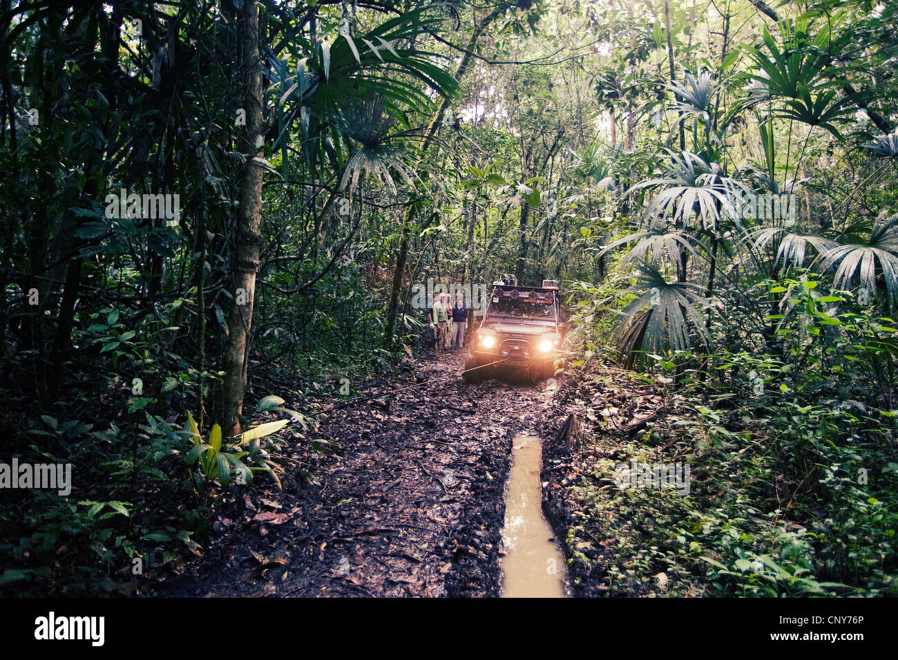 Monkey river trail, Belize Photo Stock