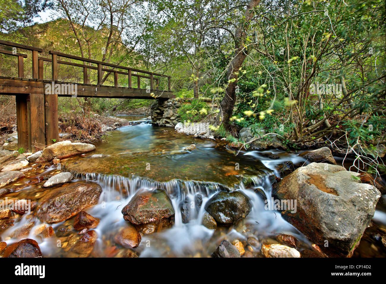 Balade dans les gorges de Kambia, le plus beau sentier, sur la partie nord de l'île de Chios, au nord-est Photo Stock