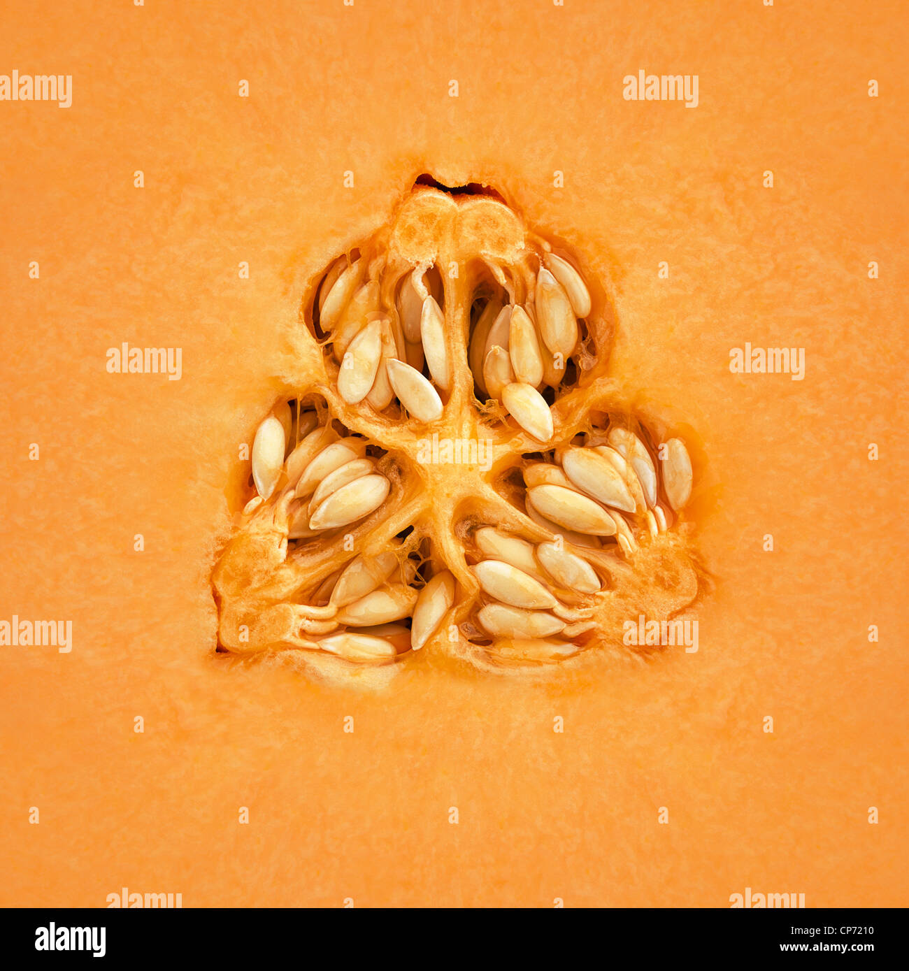 Close-up d'un melon cantaloup à l'intérieur Photo Stock