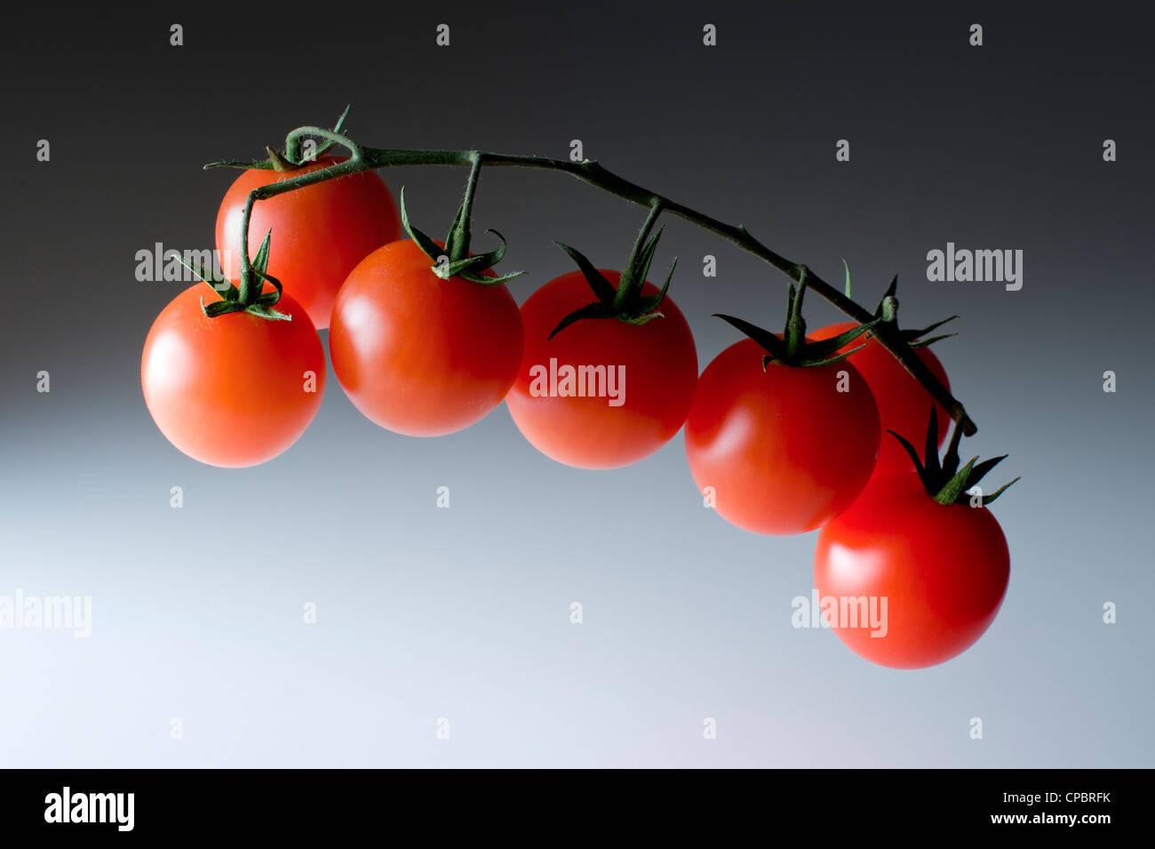 Les fruits et légumes crus frais PHOTOS STUDIO OIGNON POMME DE TERRE TOMATES POIVRE NOIX DE COCO POIRE AUCUN Photo Stock