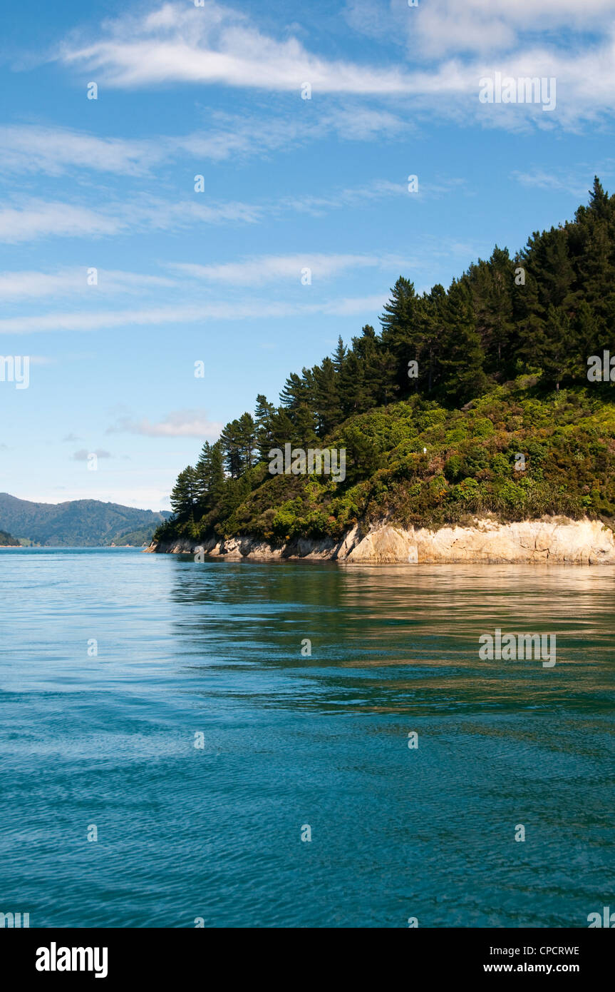 L'île du sud de Nouvelle-Zélande, Picton paysage pittoresque dans la région de Marlborough Sounds. Photo Stock