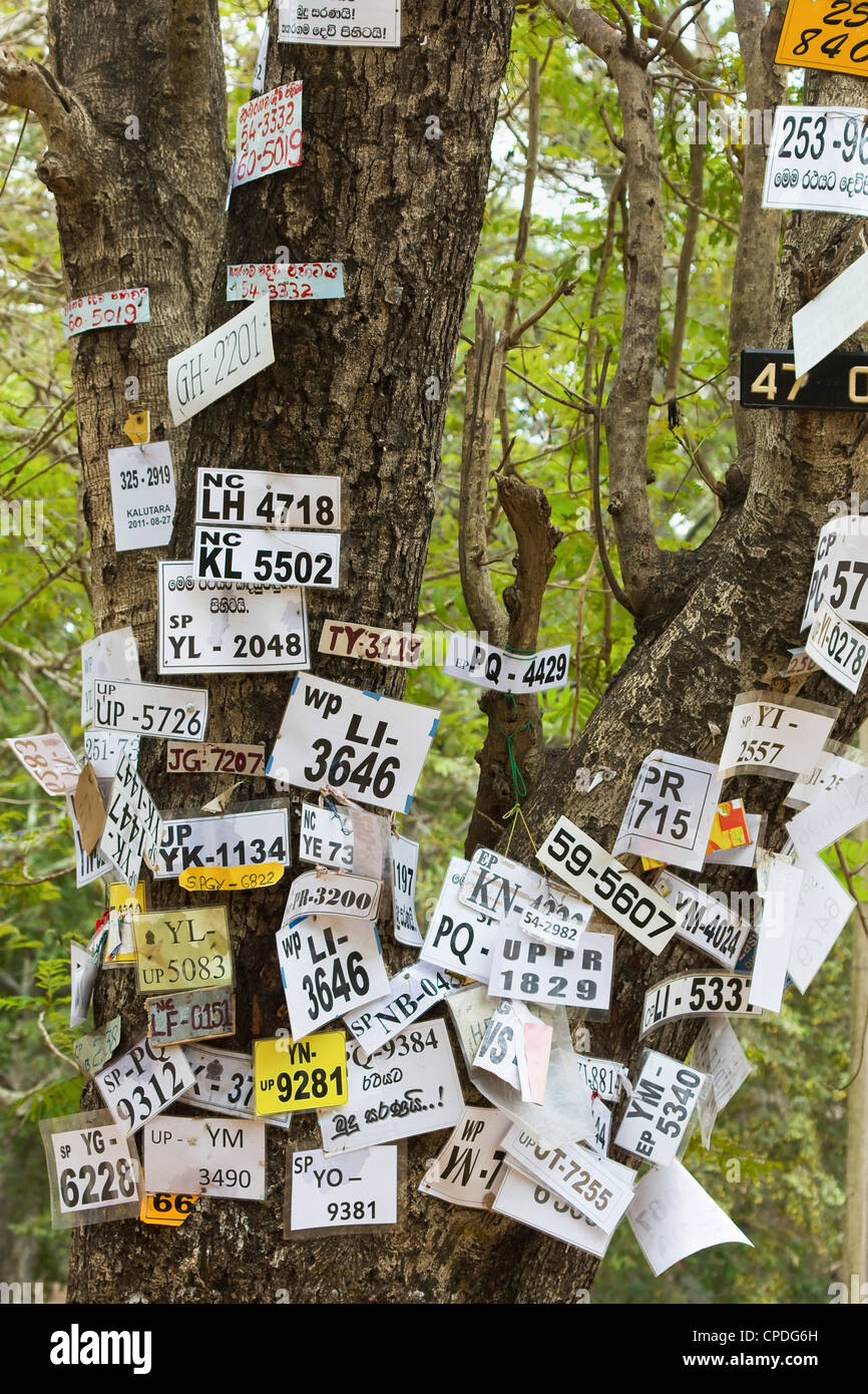 Véhicule nombre de pèlerins épinglé à un arbre dans cette ville sacrée, populaire Photo Stock