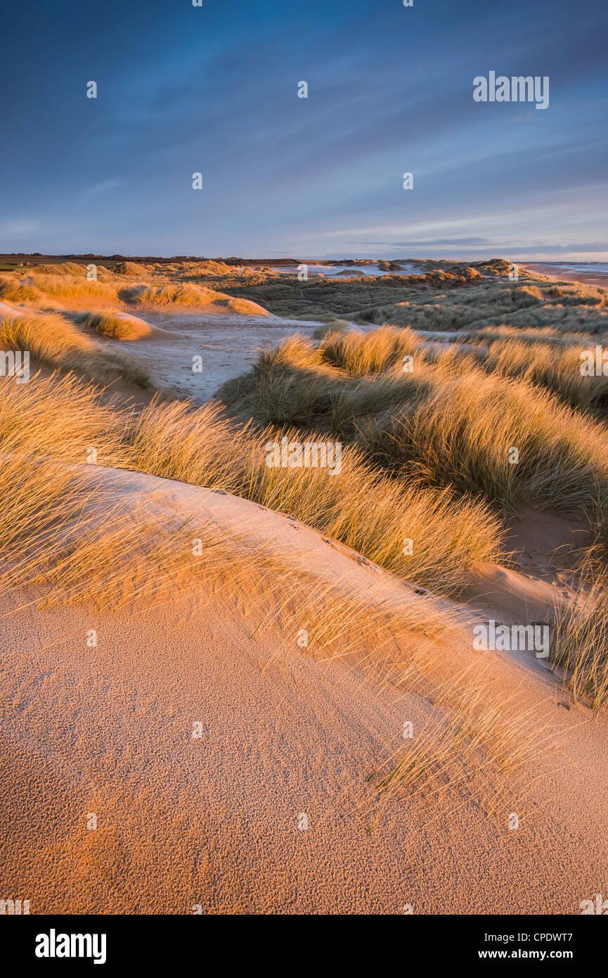 Balmedie Beach au lever du soleil, dans l'Aberdeenshire, Ecosse, Royaume-Uni Photo Stock