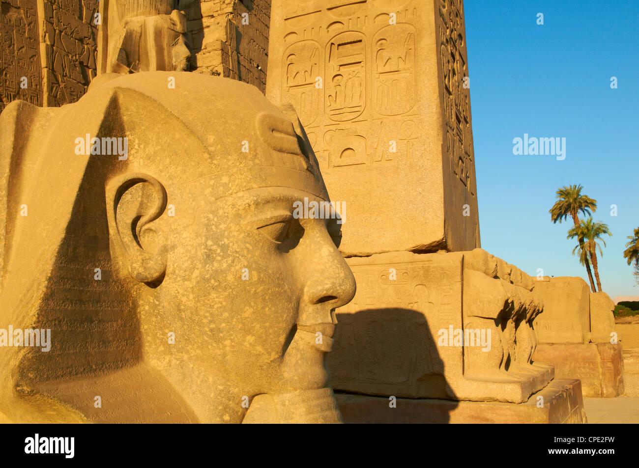 Statue du pharaon Ramsès II et l'Obélisque, temple de Louxor, Thèbes, Site du patrimoine mondial Photo Stock