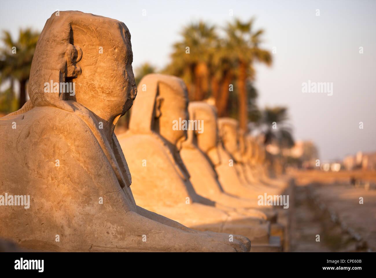 Le temple de Louxor, Louxor, Thèbes, Site du patrimoine mondial de l'UNESCO, l'Égypte, l'Afrique Photo Stock