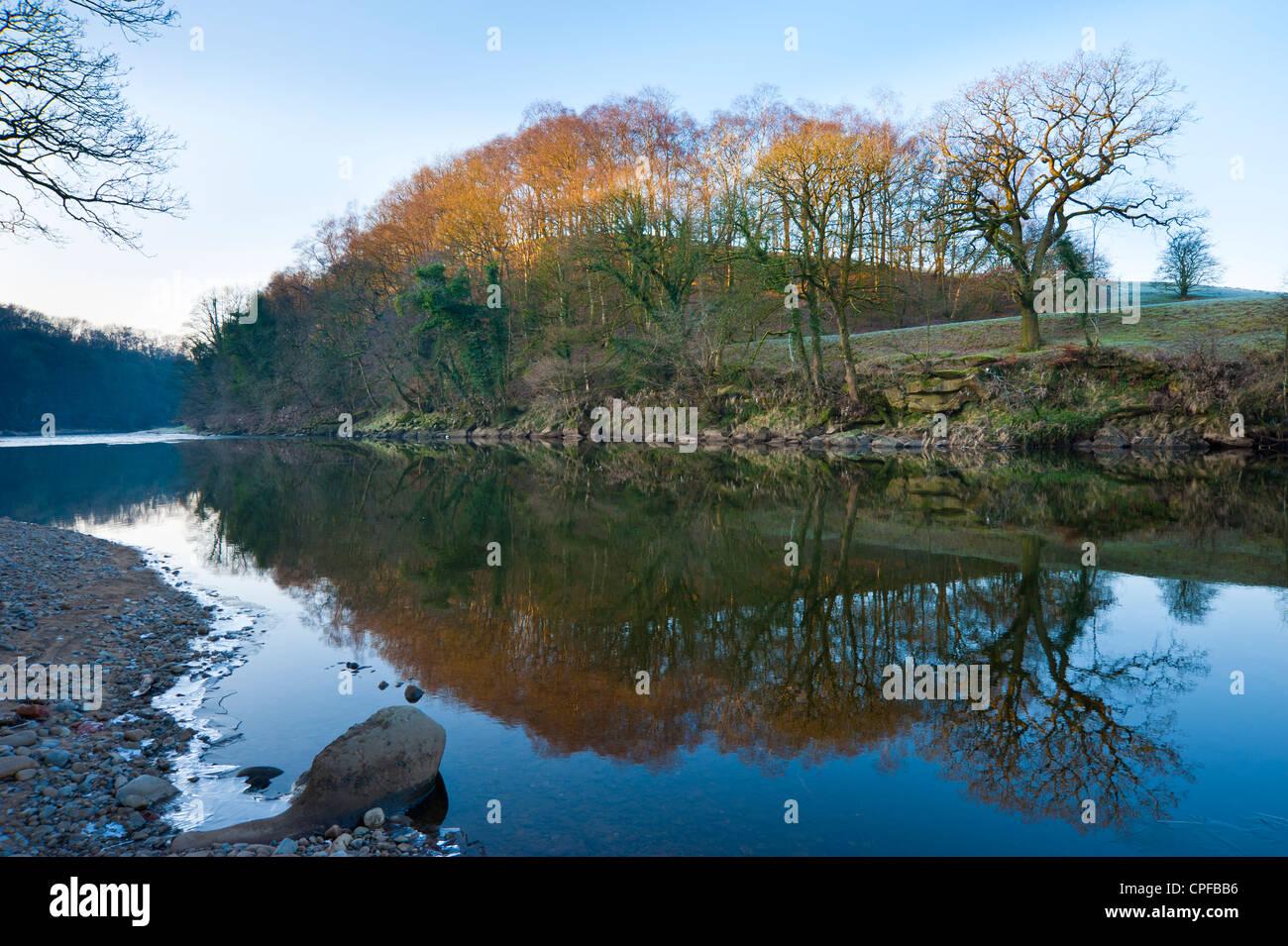 La rivière Ribble par Marles Bois près de Ribchester Lancashire England Photo Stock