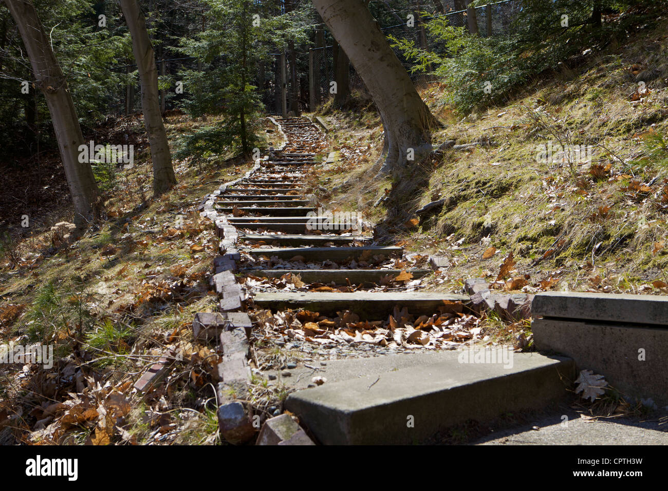 Escalier de l'enfer à Lake Forest Cimetière, Grand Haven Banque D'Images