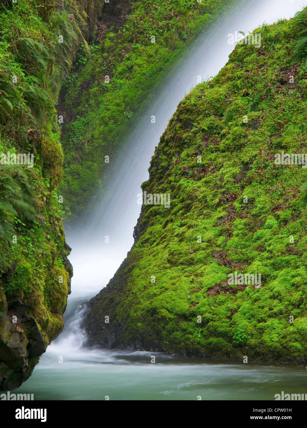 Mount Hood National Forest, ou: Détail de Bridal Veil Falls et des roches couvertes de mousse Photo Stock