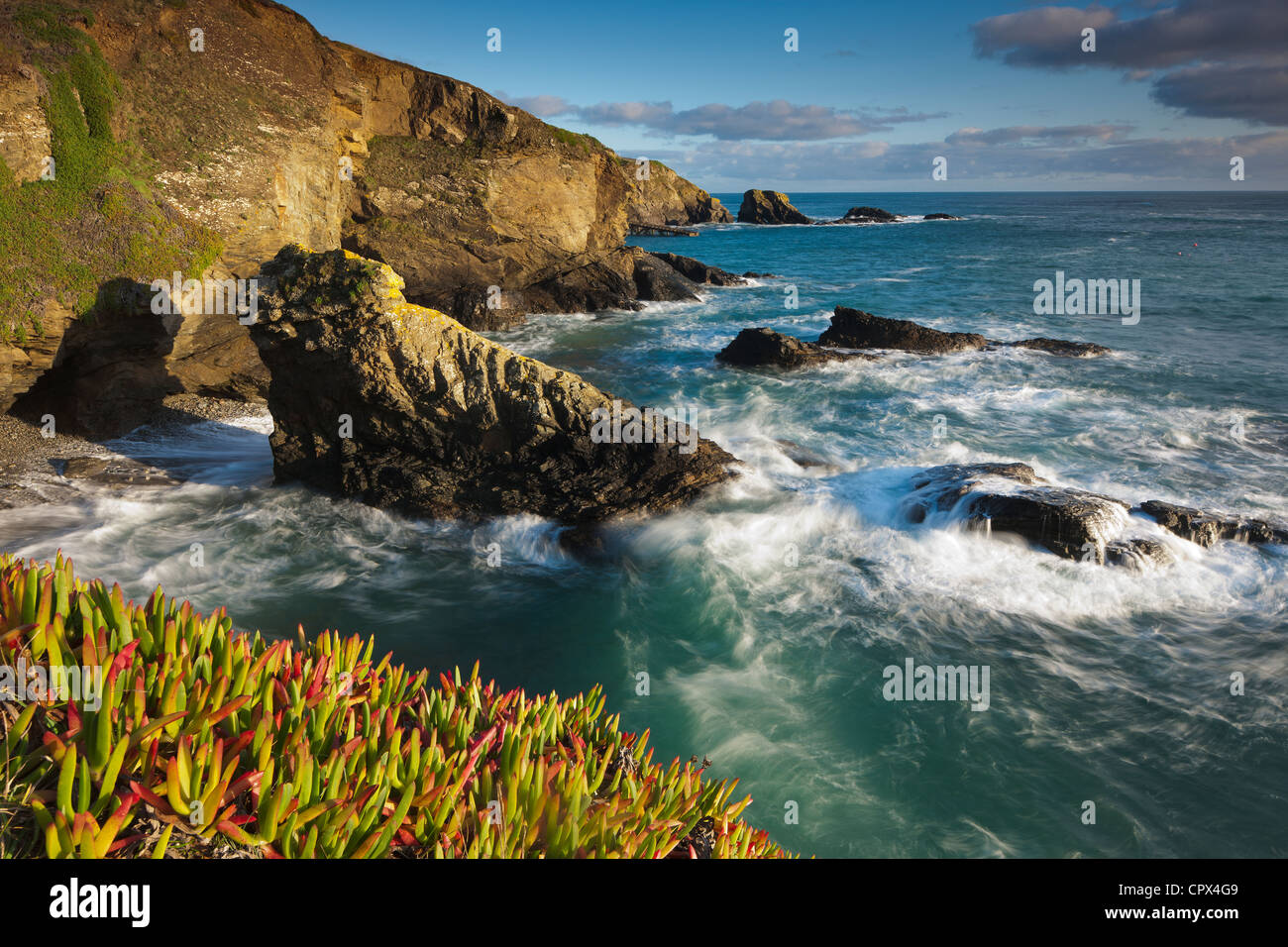 Lizard Point (point le plus au sud de la Grande-Bretagne), Cornwall, Angleterre Photo Stock