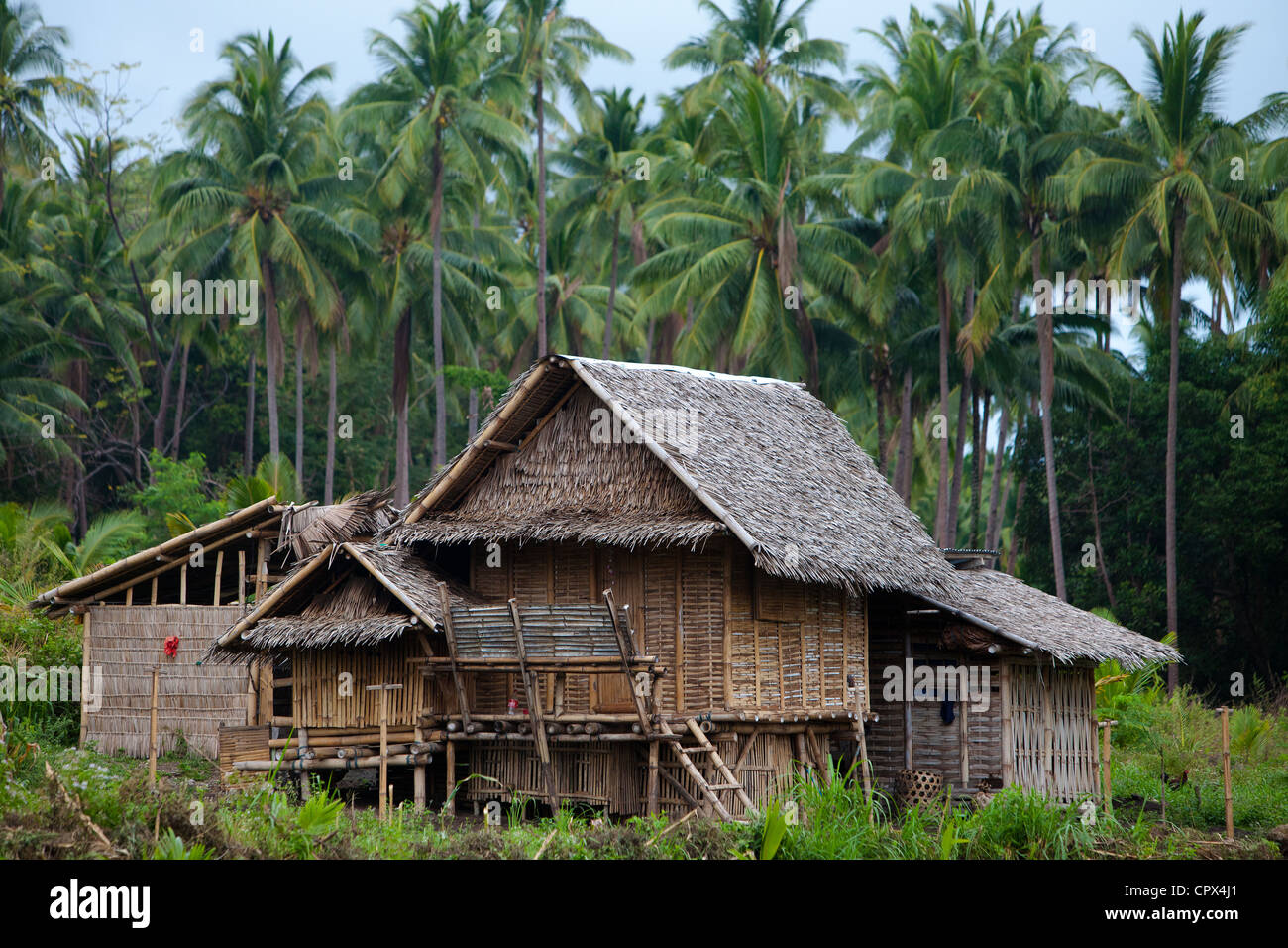 Une maison typique dans la forêt, Negros, Philippines Photo Stock